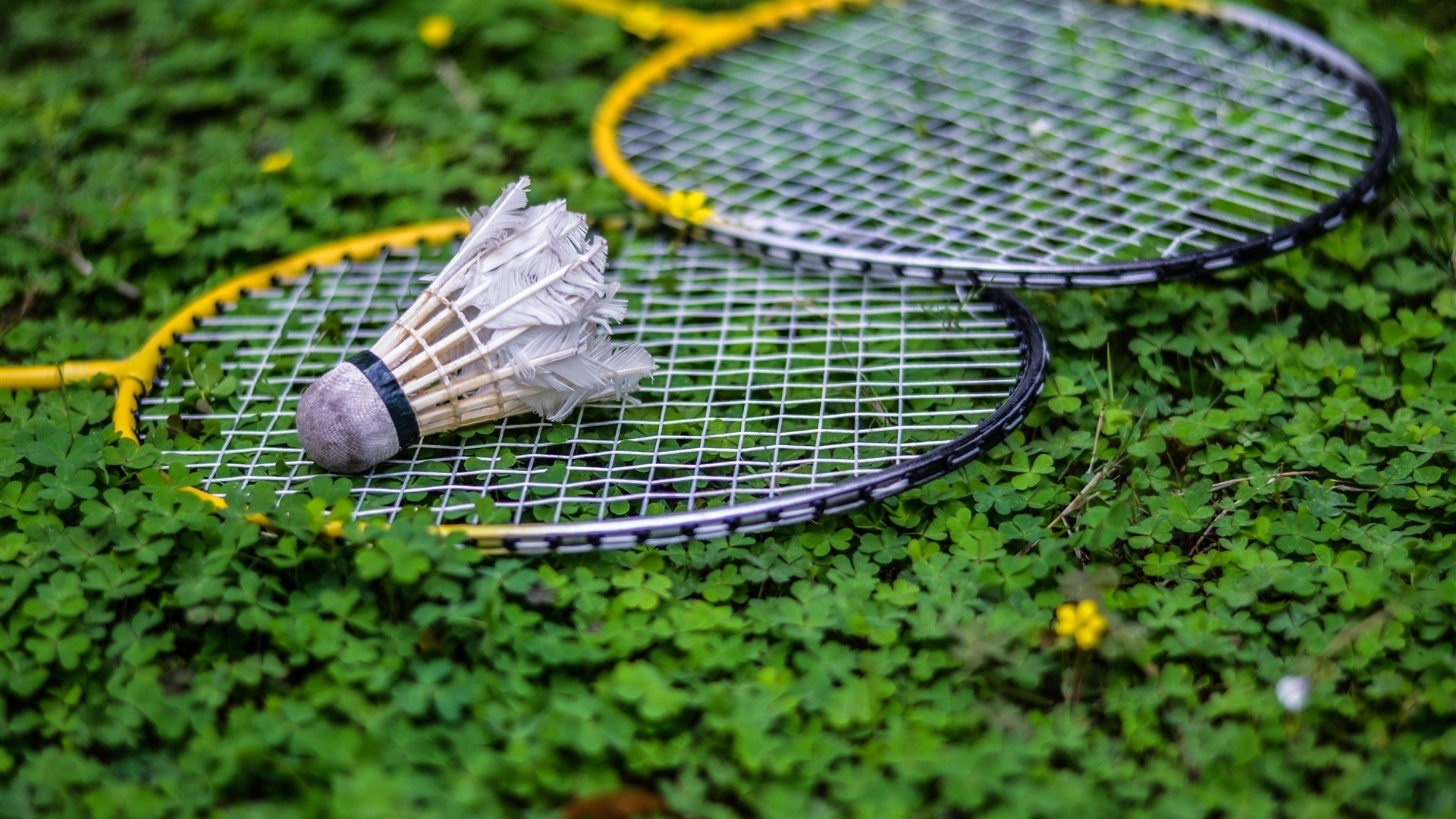 Badminton Wallpaper Picture hd