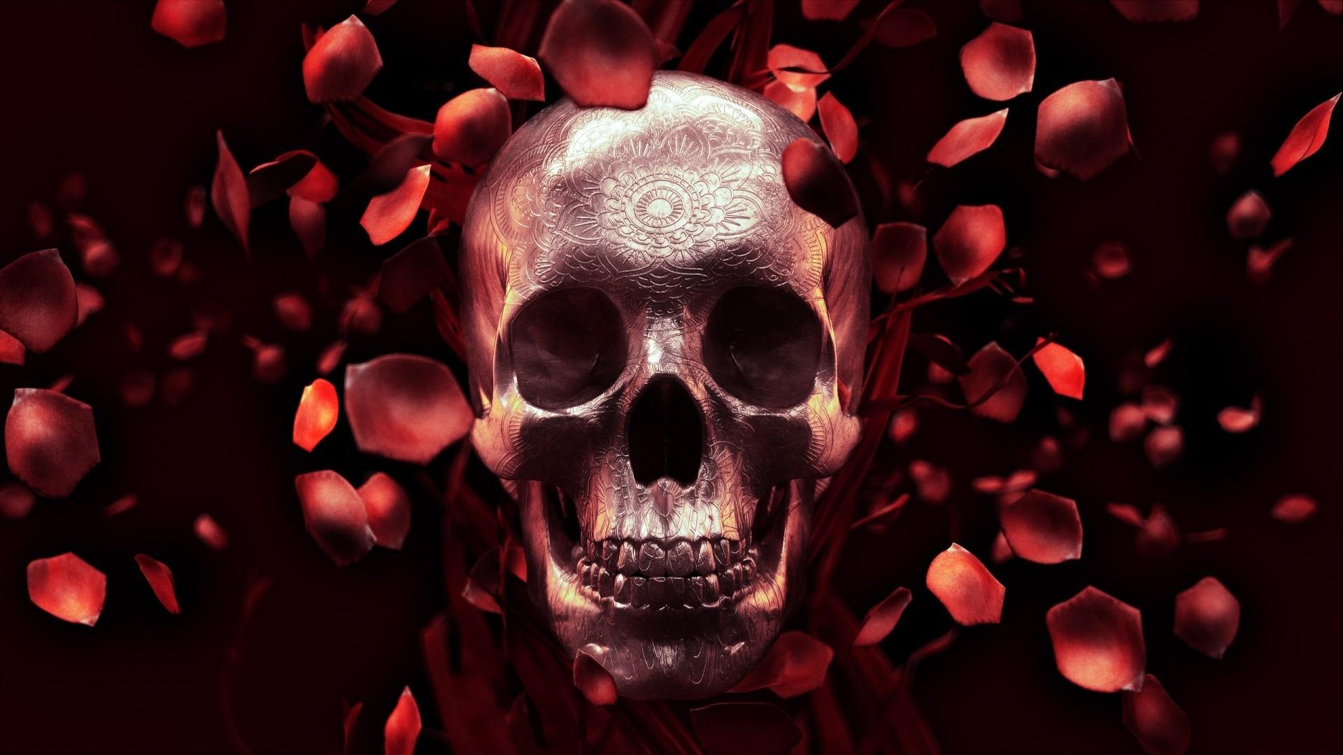 Dead Rose Wallpaper image hd