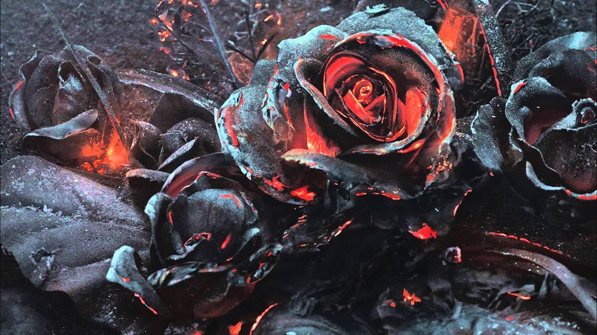 Dead Rose Desktop Wallpaper