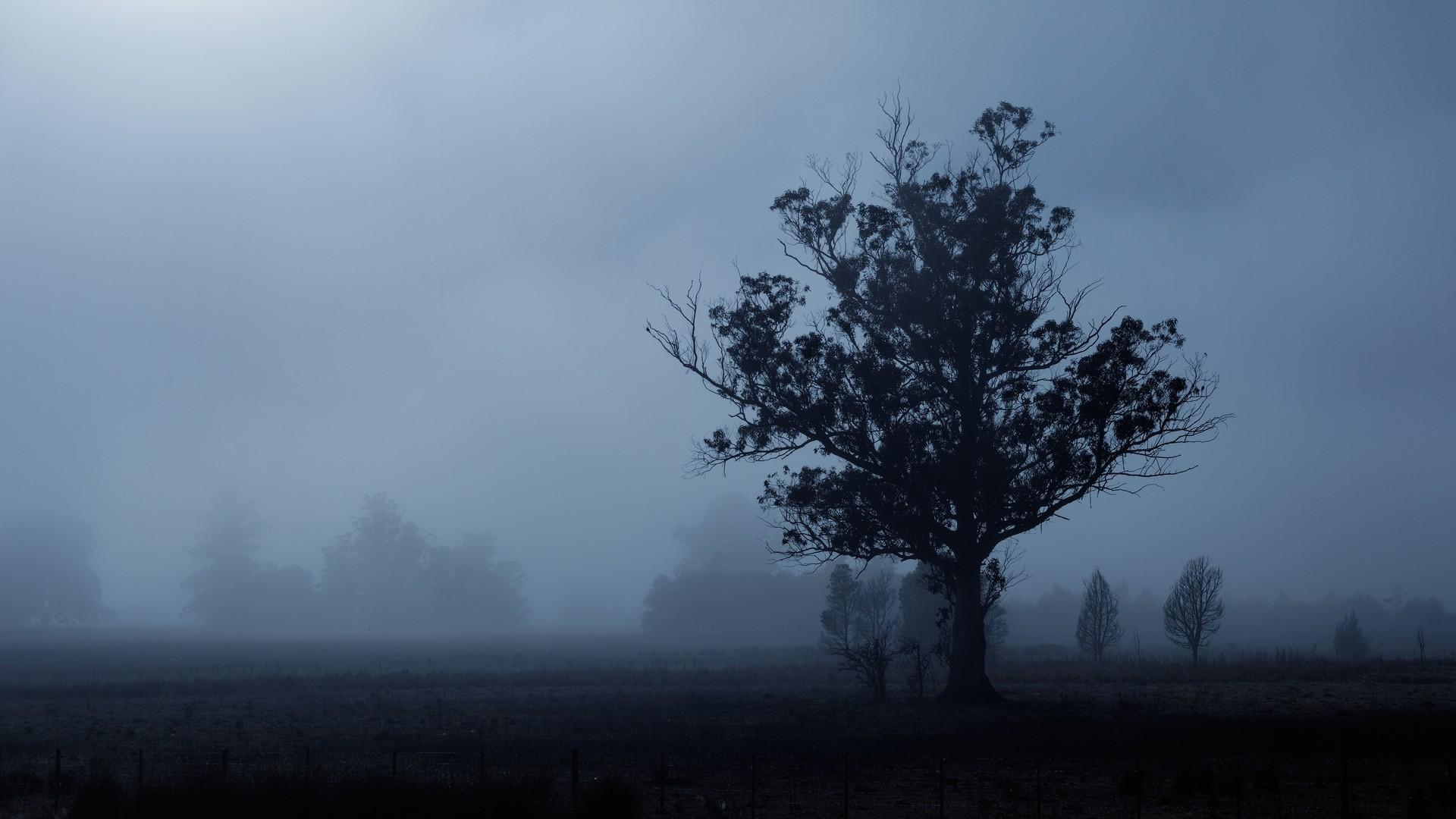 Gloomy Image