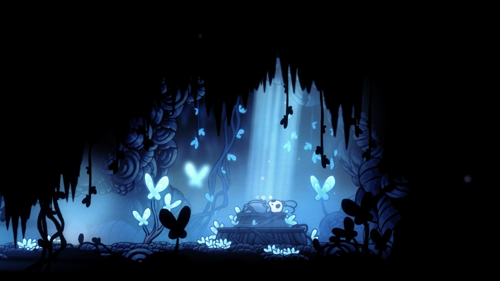Hollow Knight Wallpaper for pc