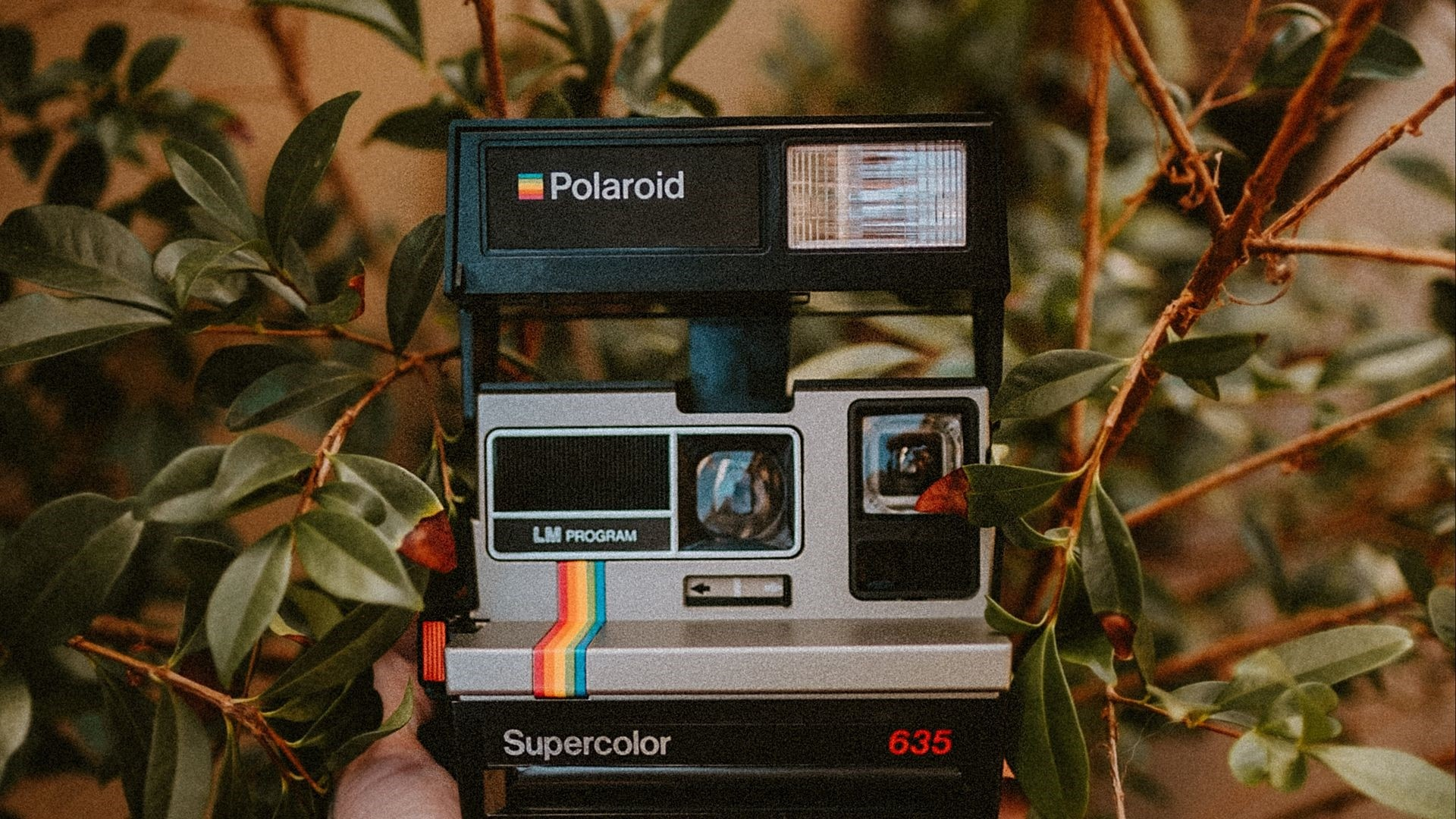 Polaroid computer wallpaper