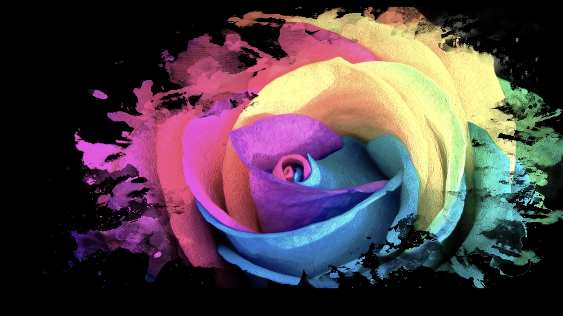 Rainbow Rose Free Wallpaper