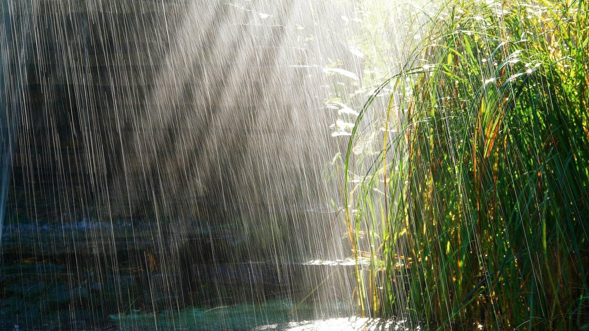 Rain Wallpaper Picture hd