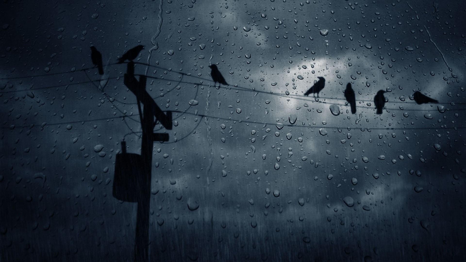 Rain PC Wallpaper