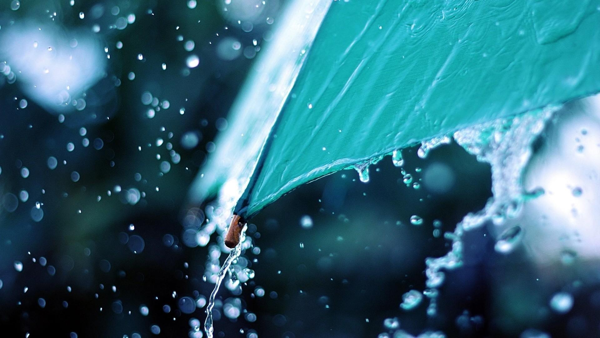 Rain Free Wallpaper
