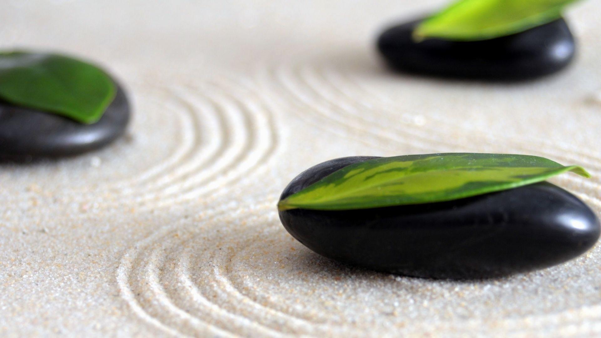 Zen Picture