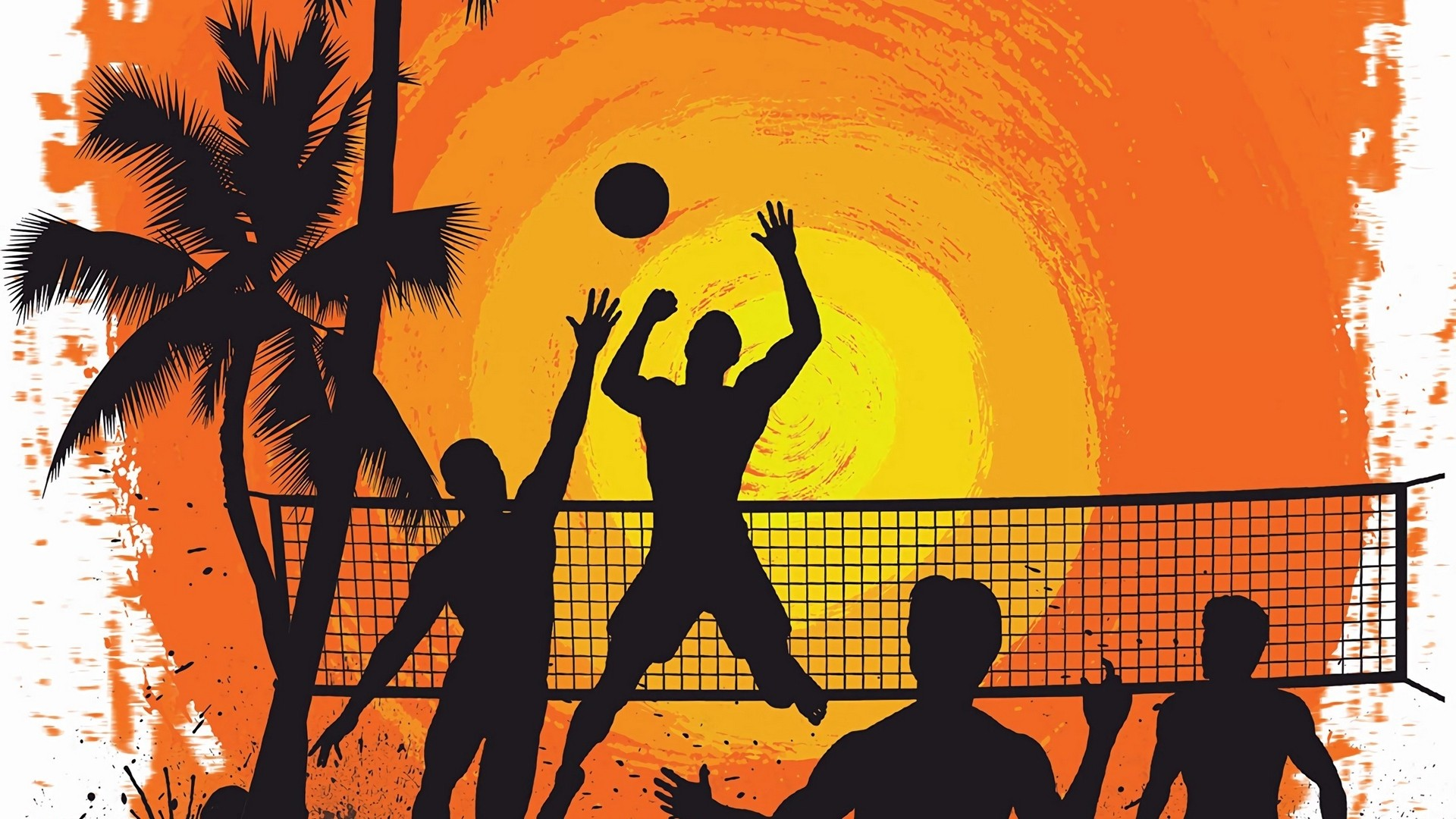 Volleyball Free Wallpaper and Background