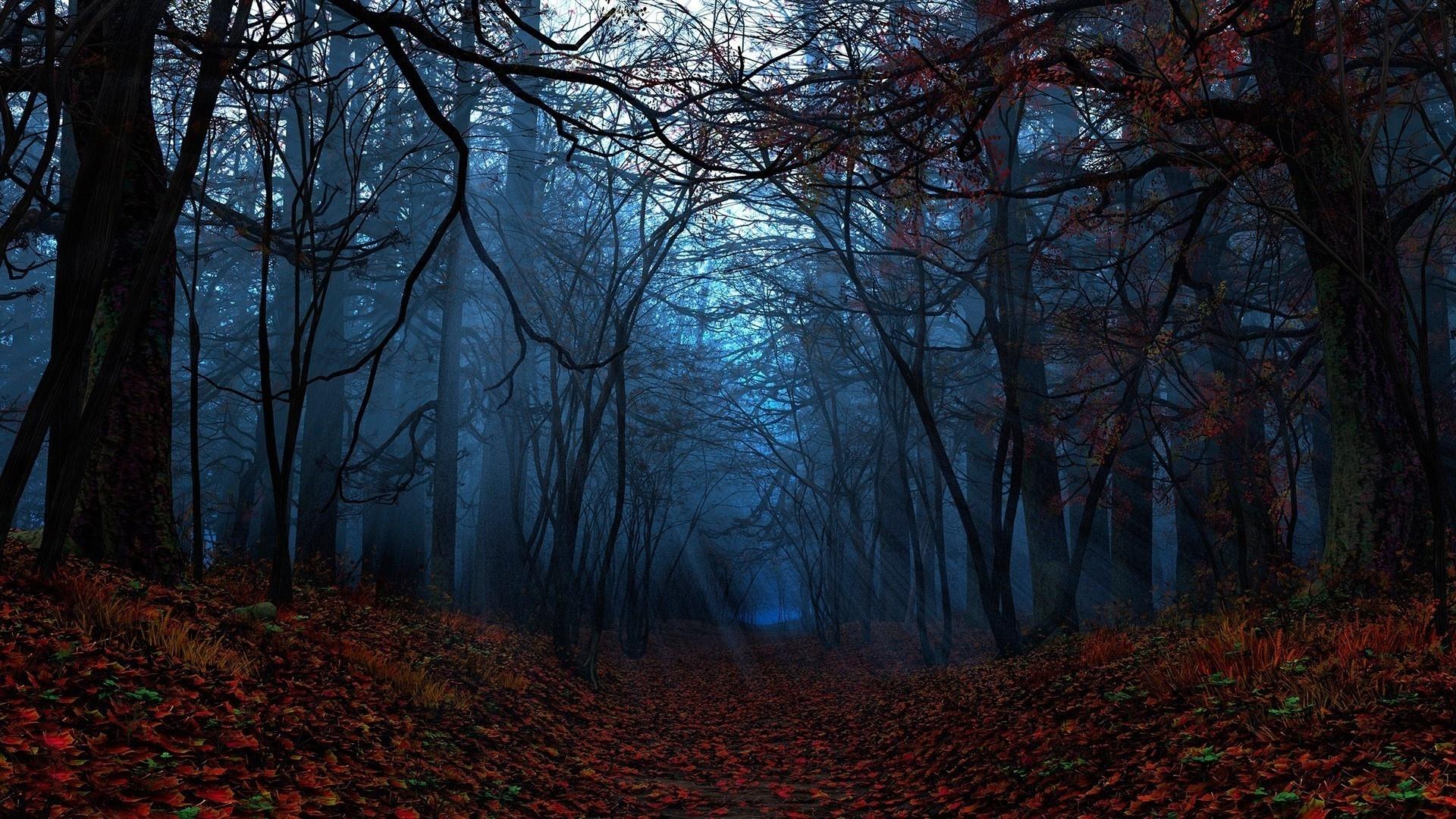 Dark Autumn Pic