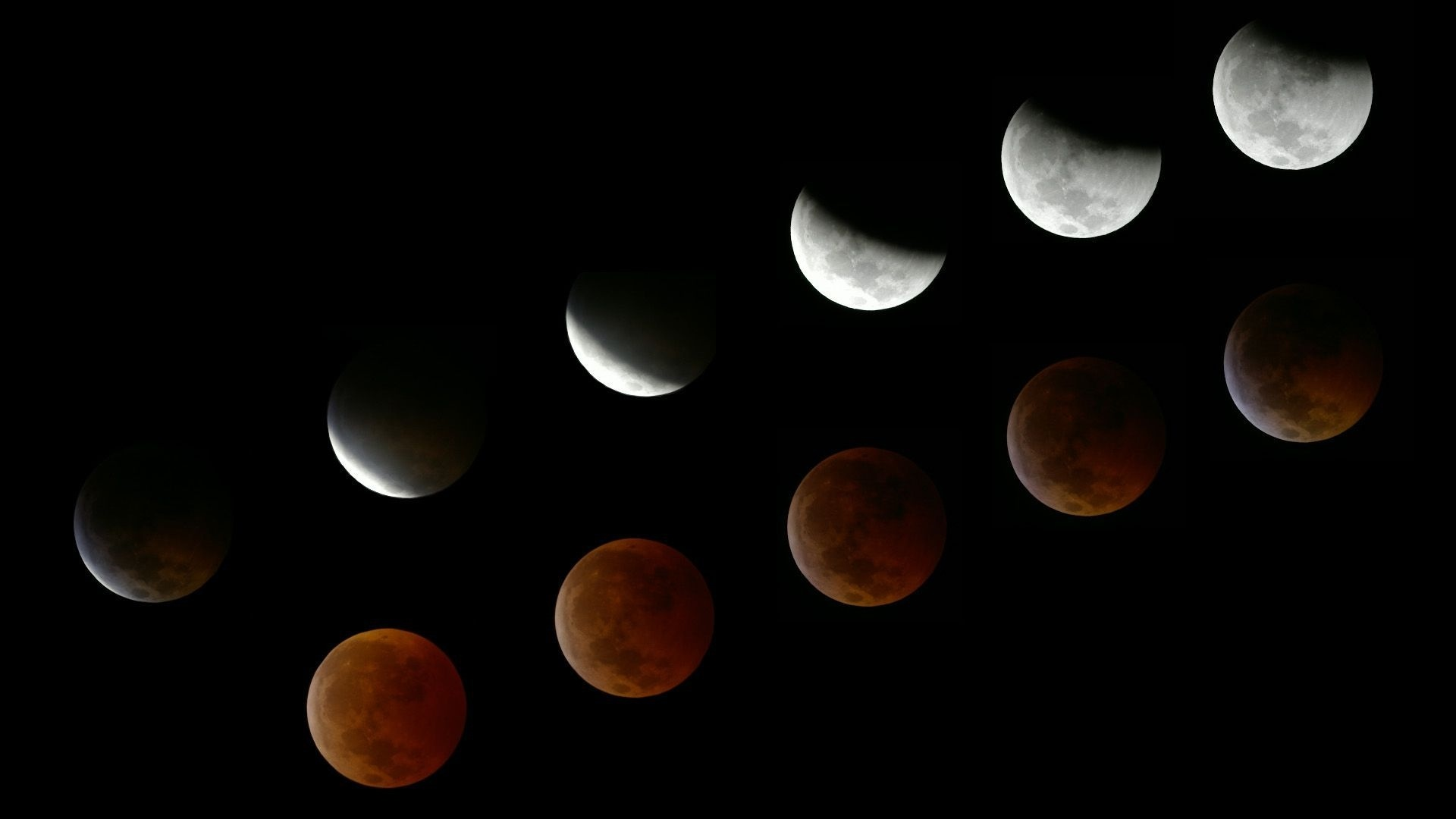 Moon Phases Image