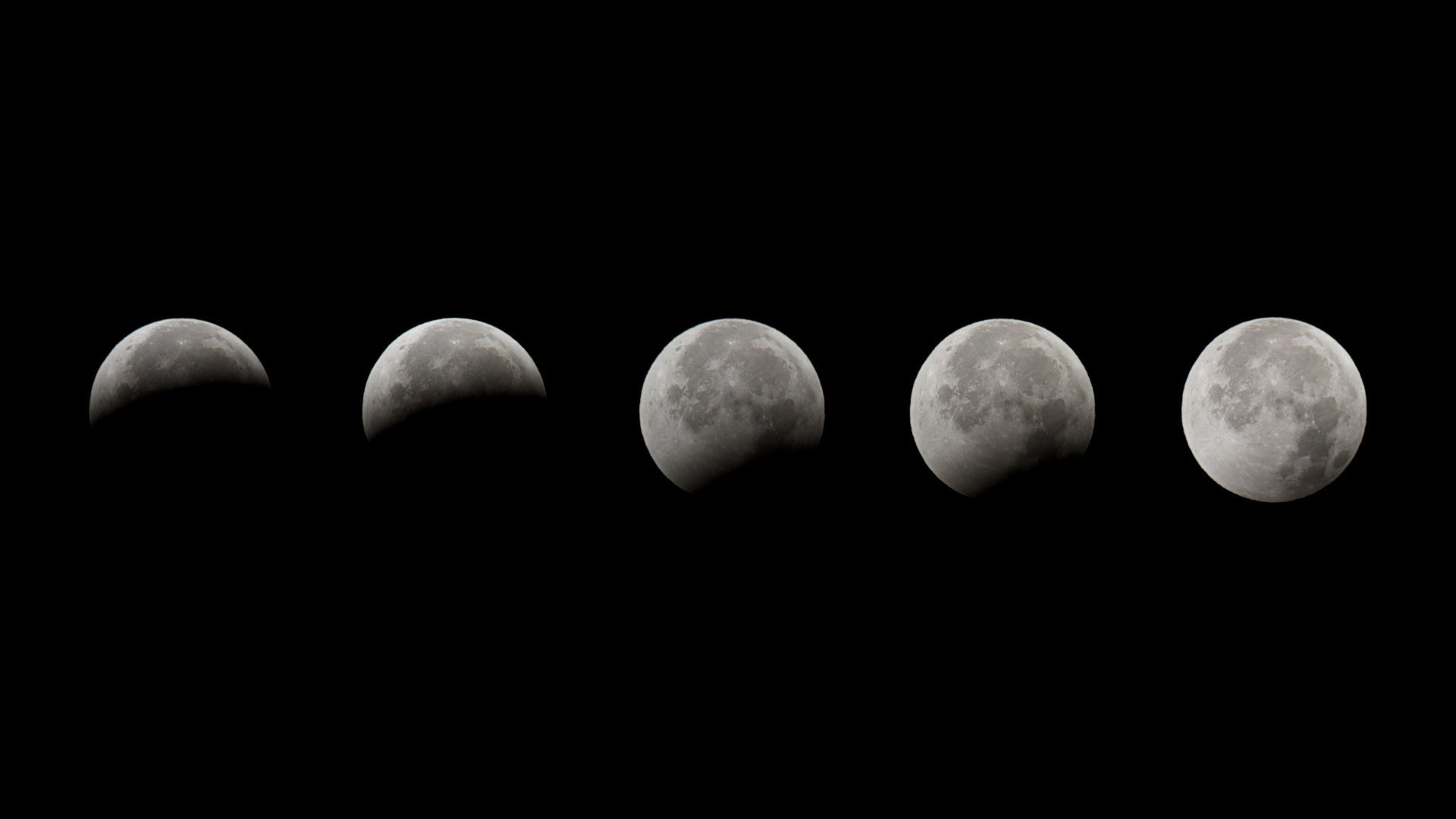 Moon Phases Picture