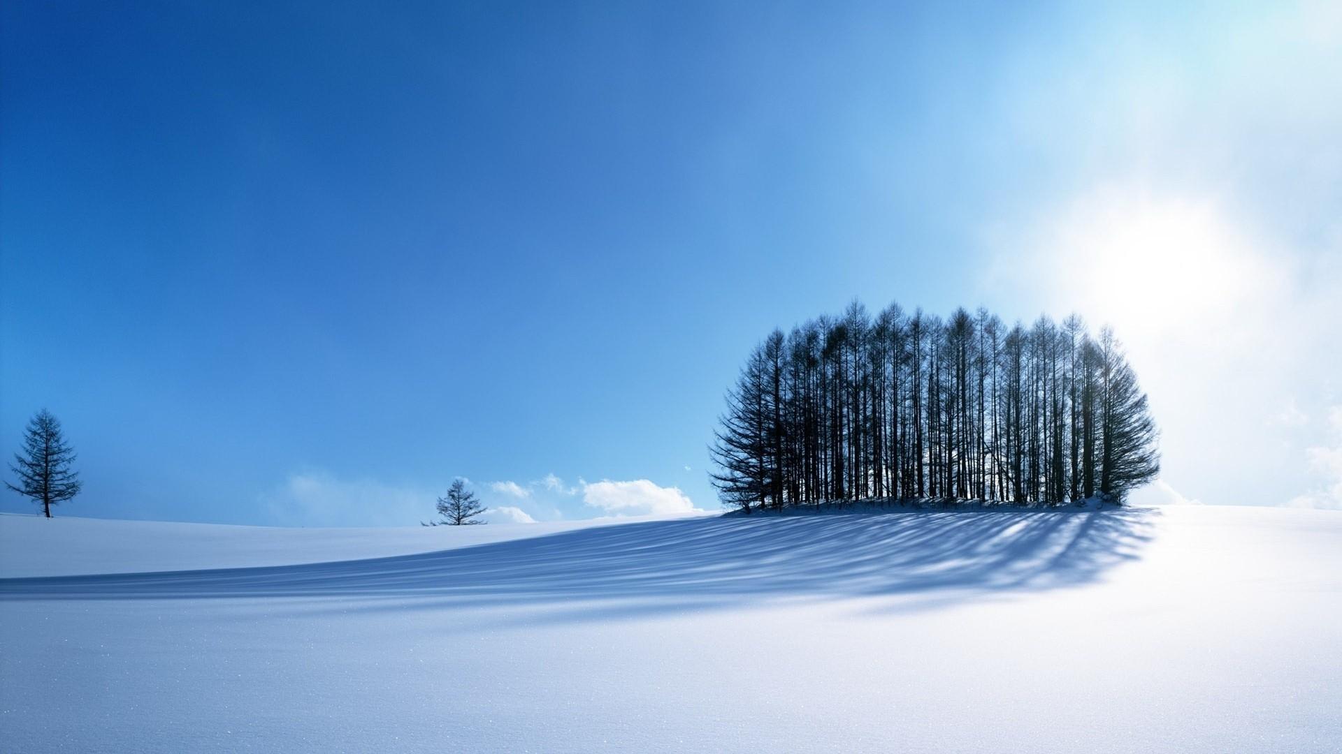 Cold Full HD Wallpaper