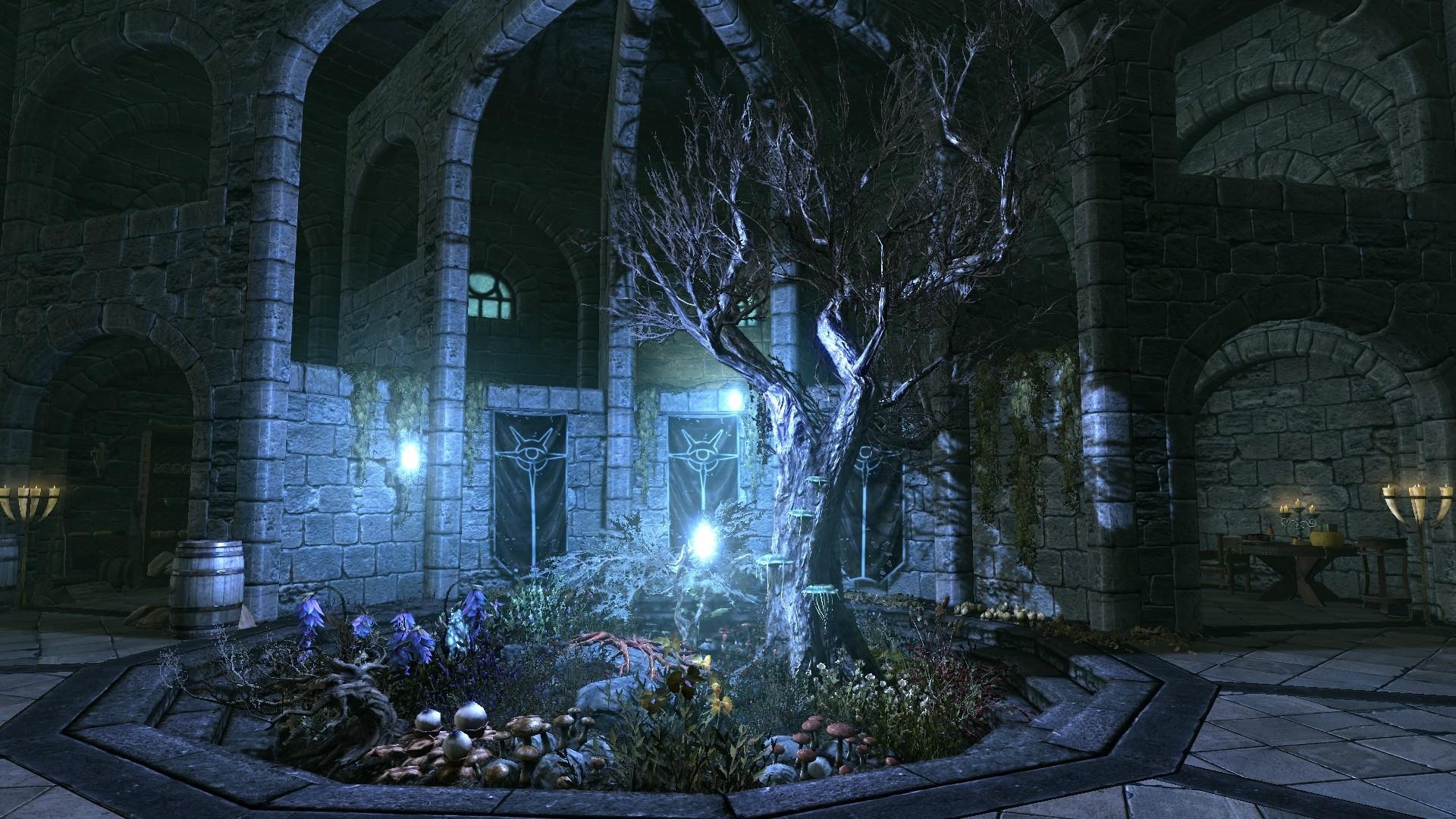 Elder Scrolls HD Wallpaper