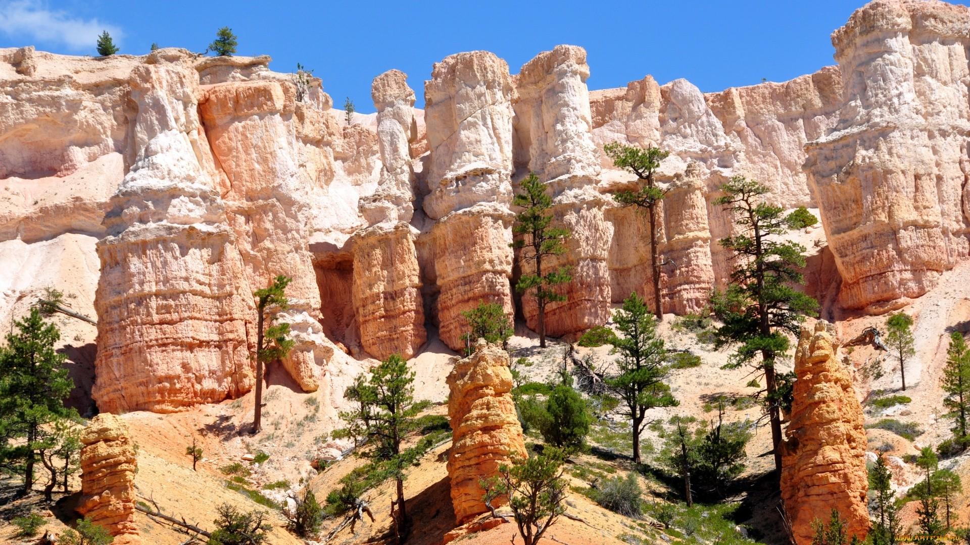 Utah Pic
