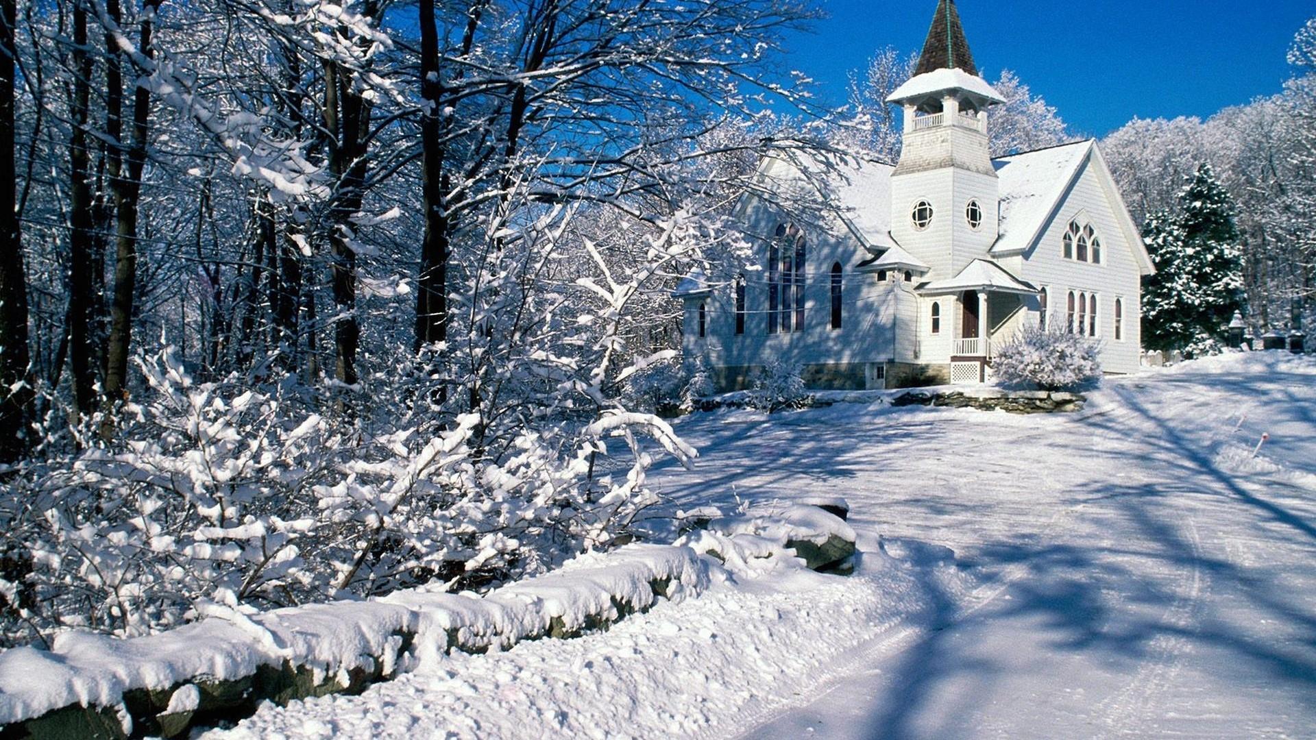 Winter Wonderland Download Wallpaper