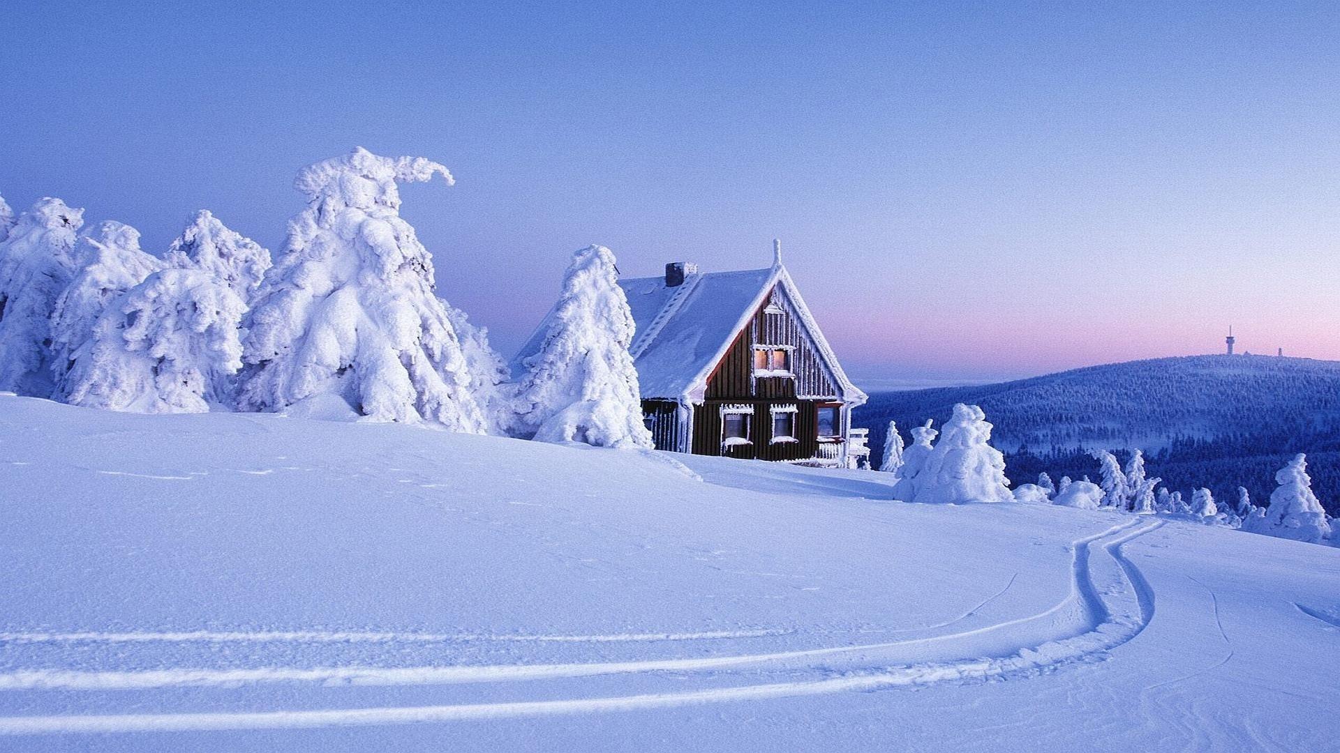 Winter Wonderland Background Wallpaper