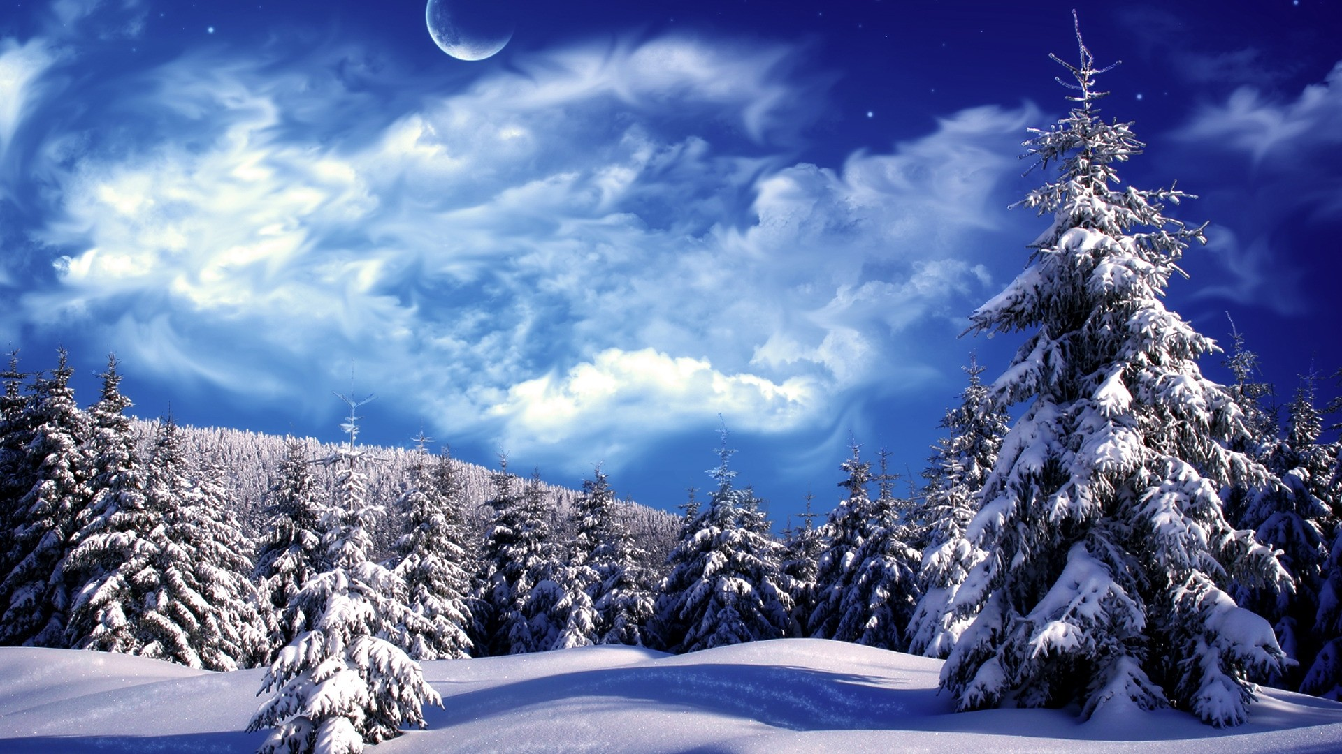 Winter Wonderland Free Wallpaper and Background