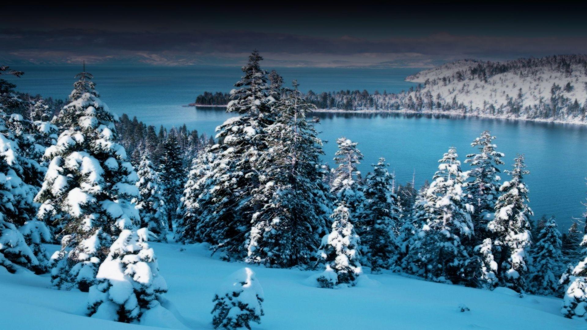 Winter Wonderland HD Download