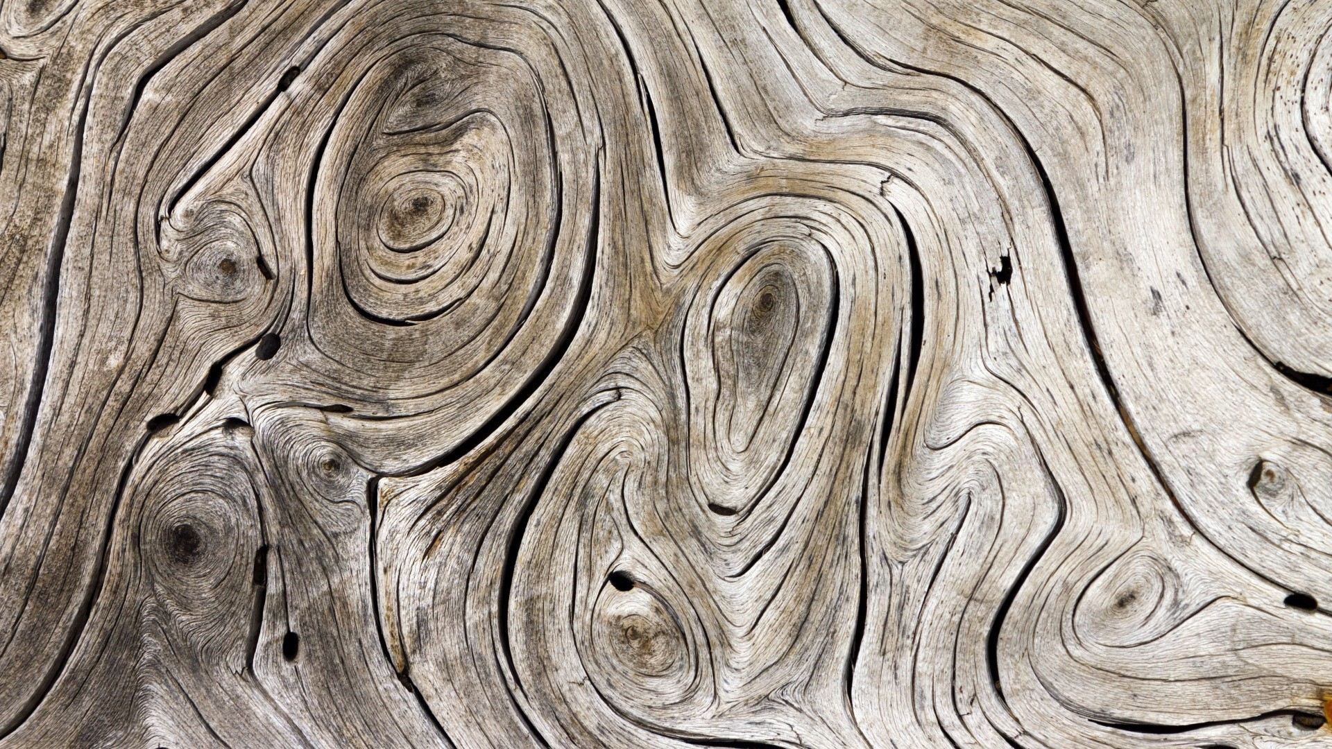 Wood Grain HD Wallpaper
