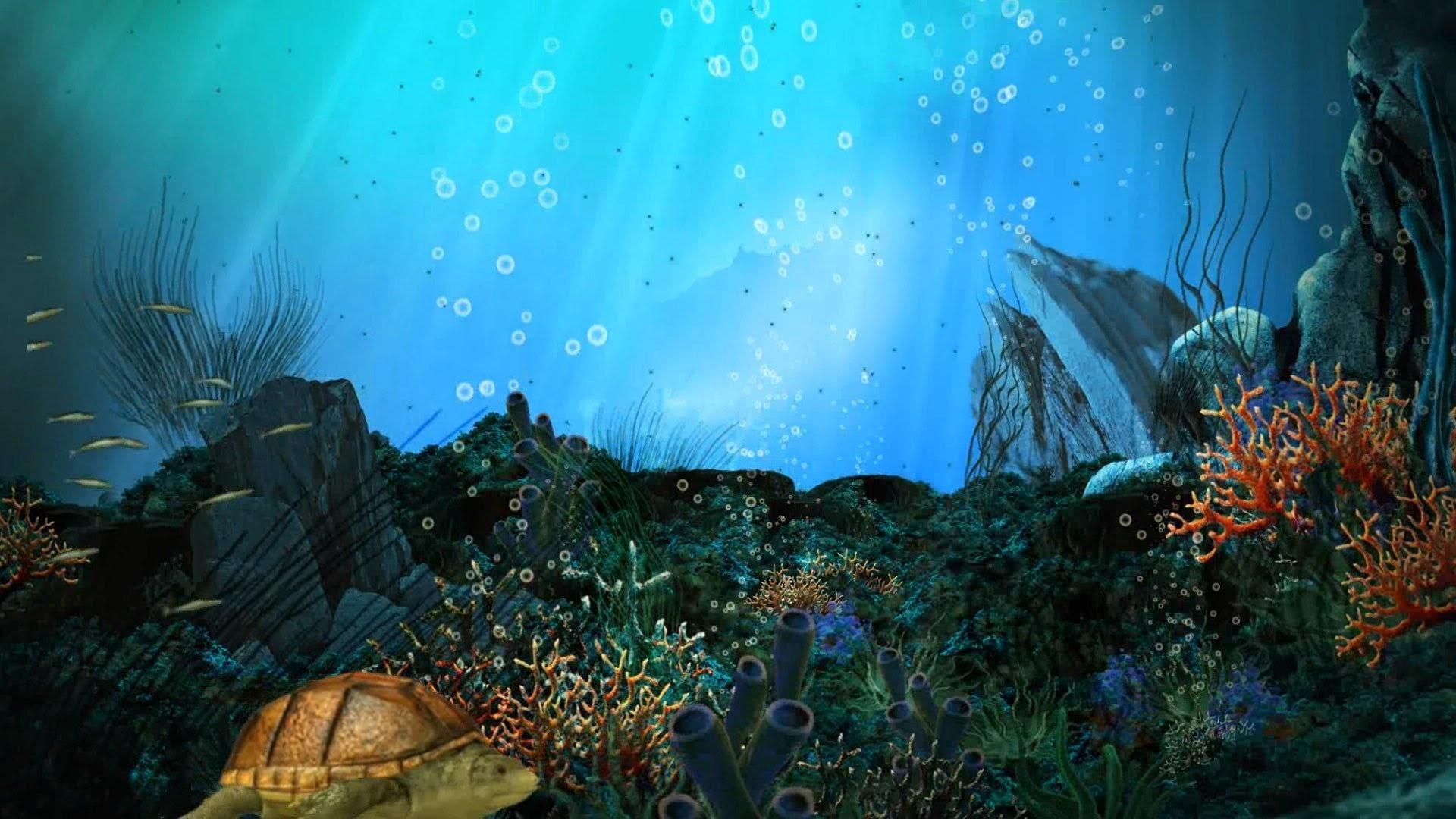 Aquarium computer wallpaper