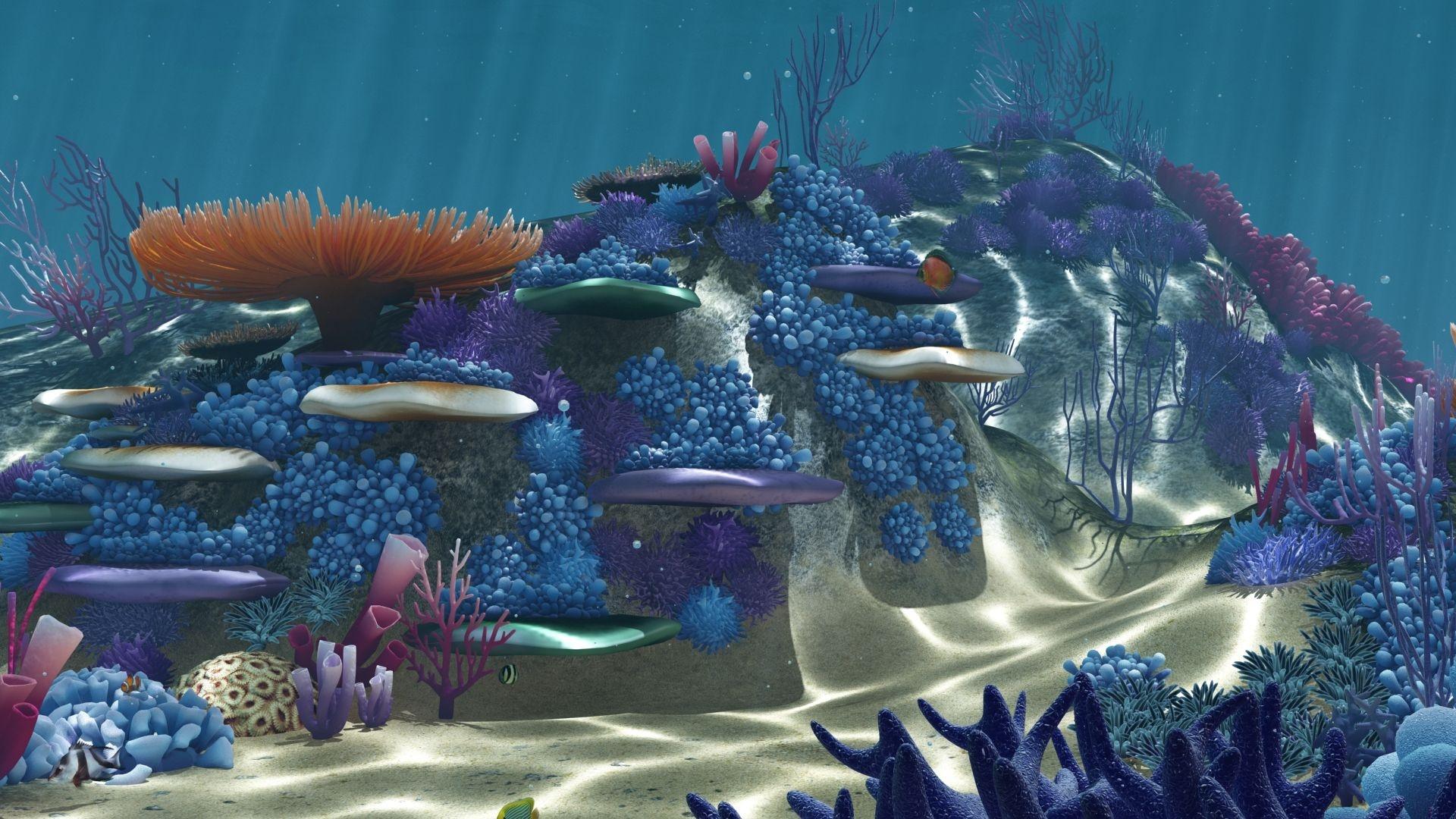 Aquarium Pic