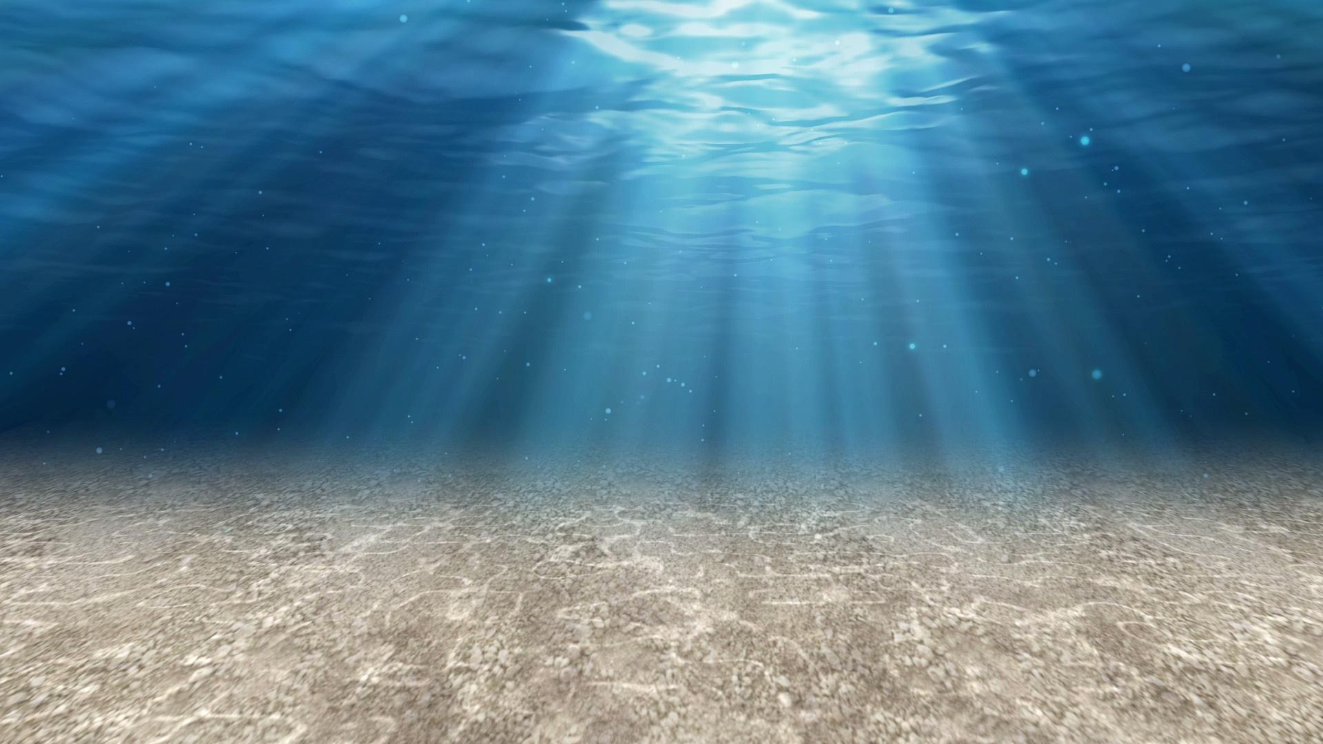 Aquarium Wallpaper Picture hd
