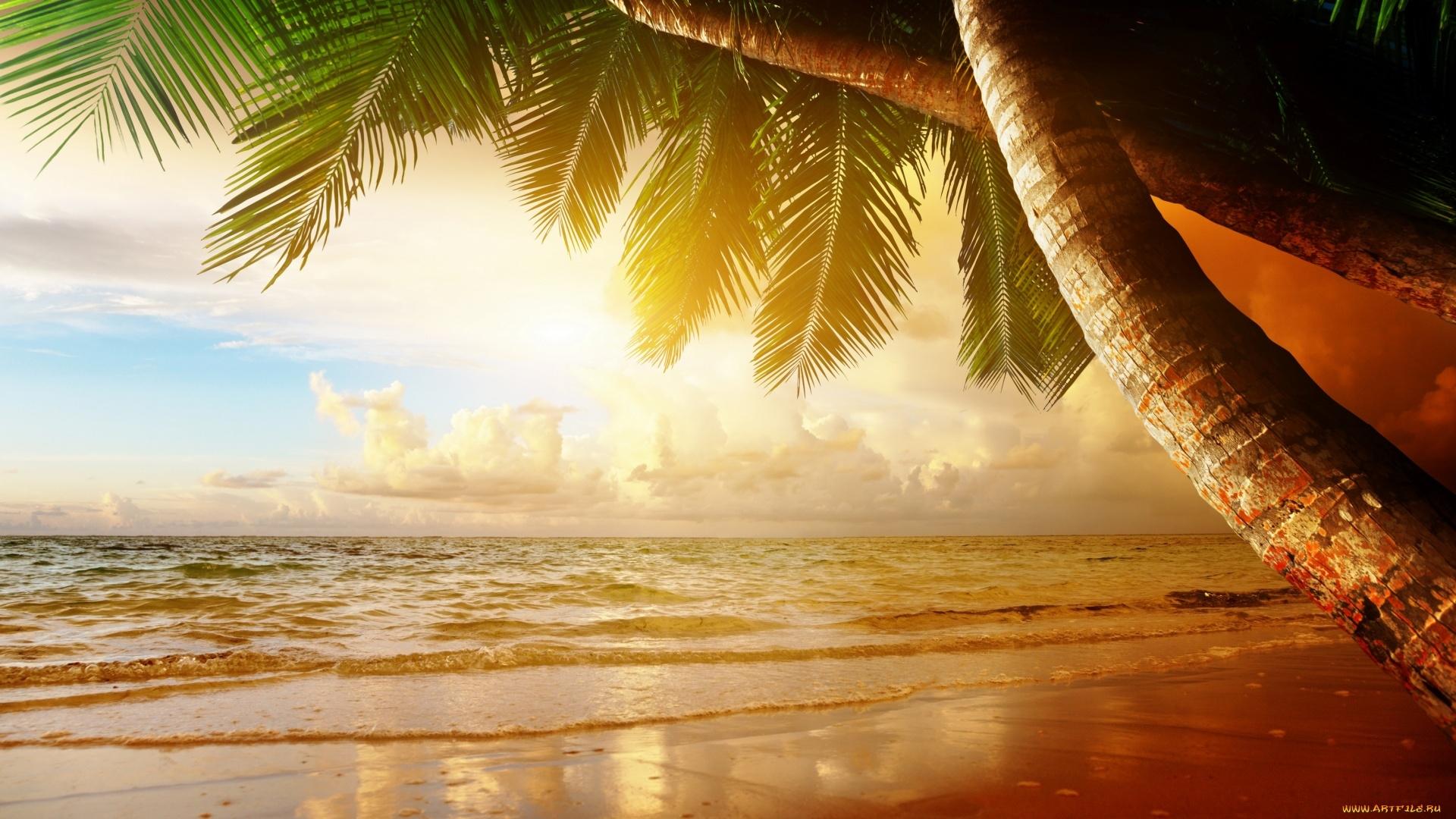 Paradise Full HD Wallpaper