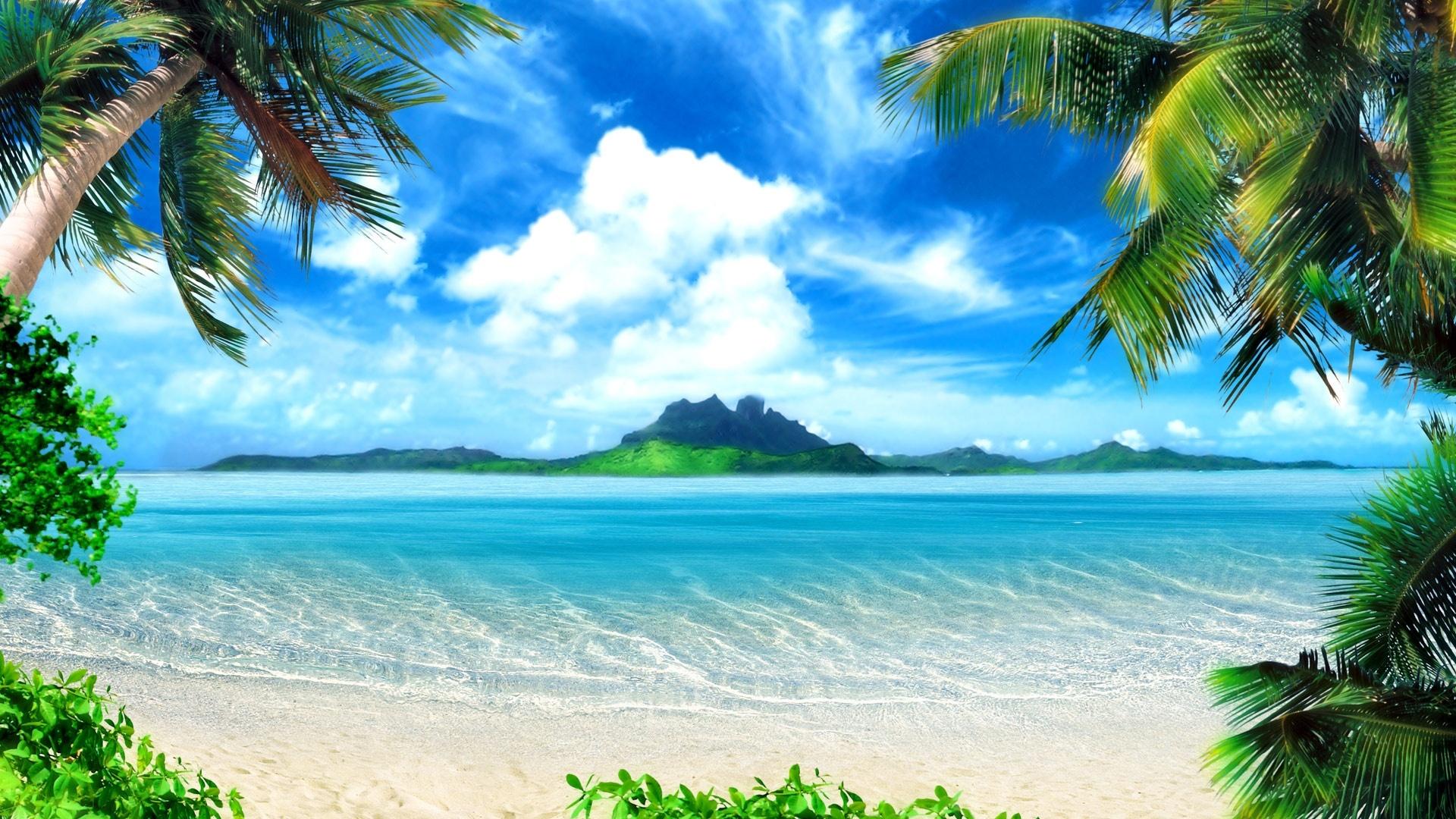 Paradise High Quality