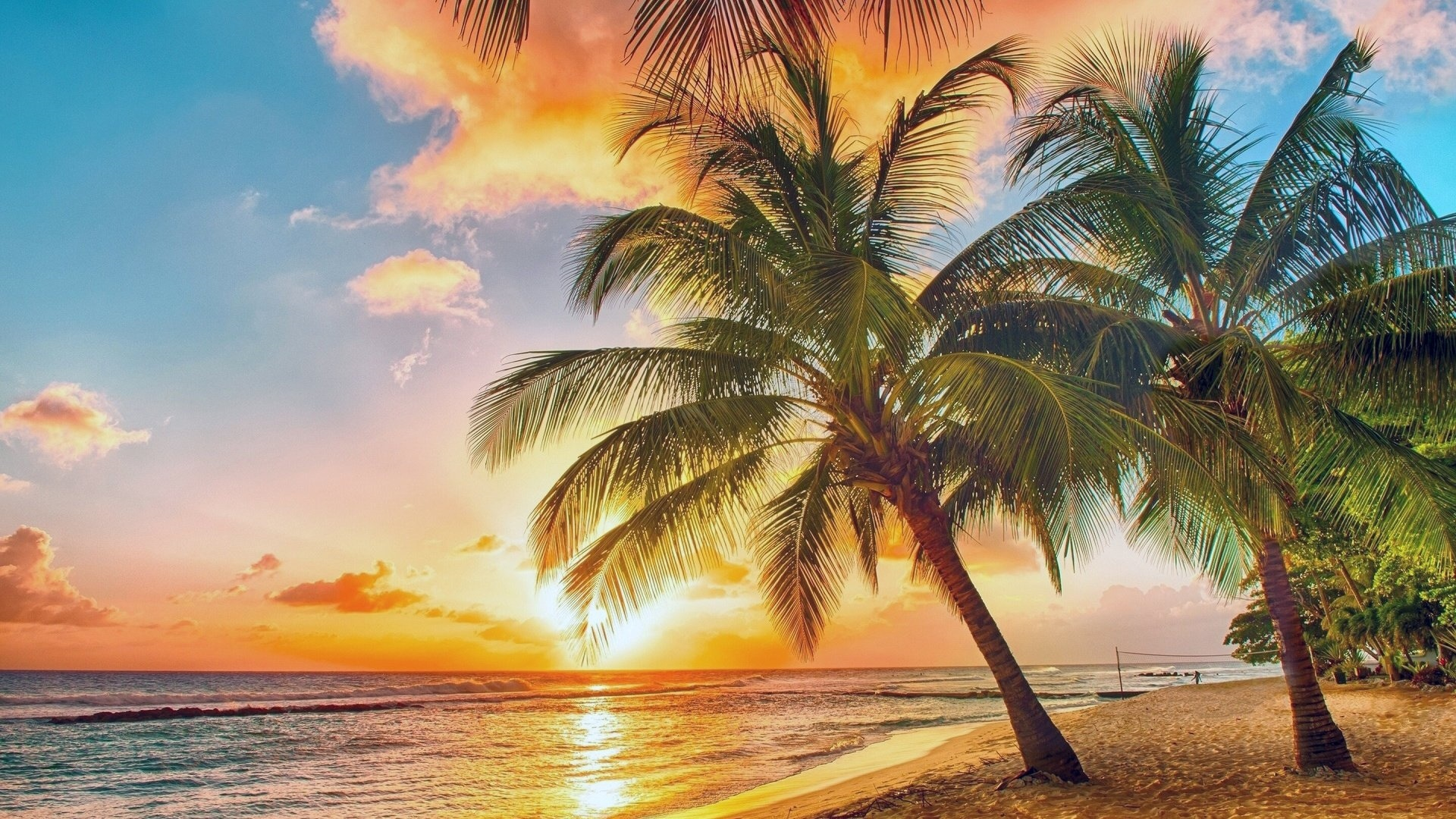 Paradise Wallpaper for pc