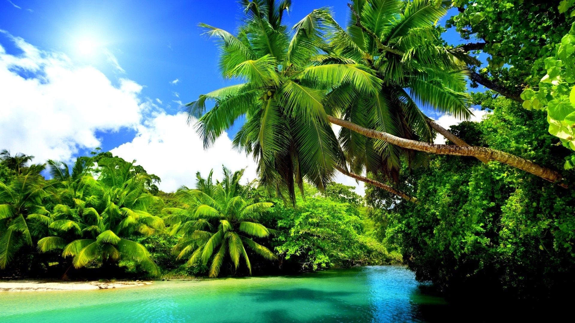 Paradise hd wallpaper download