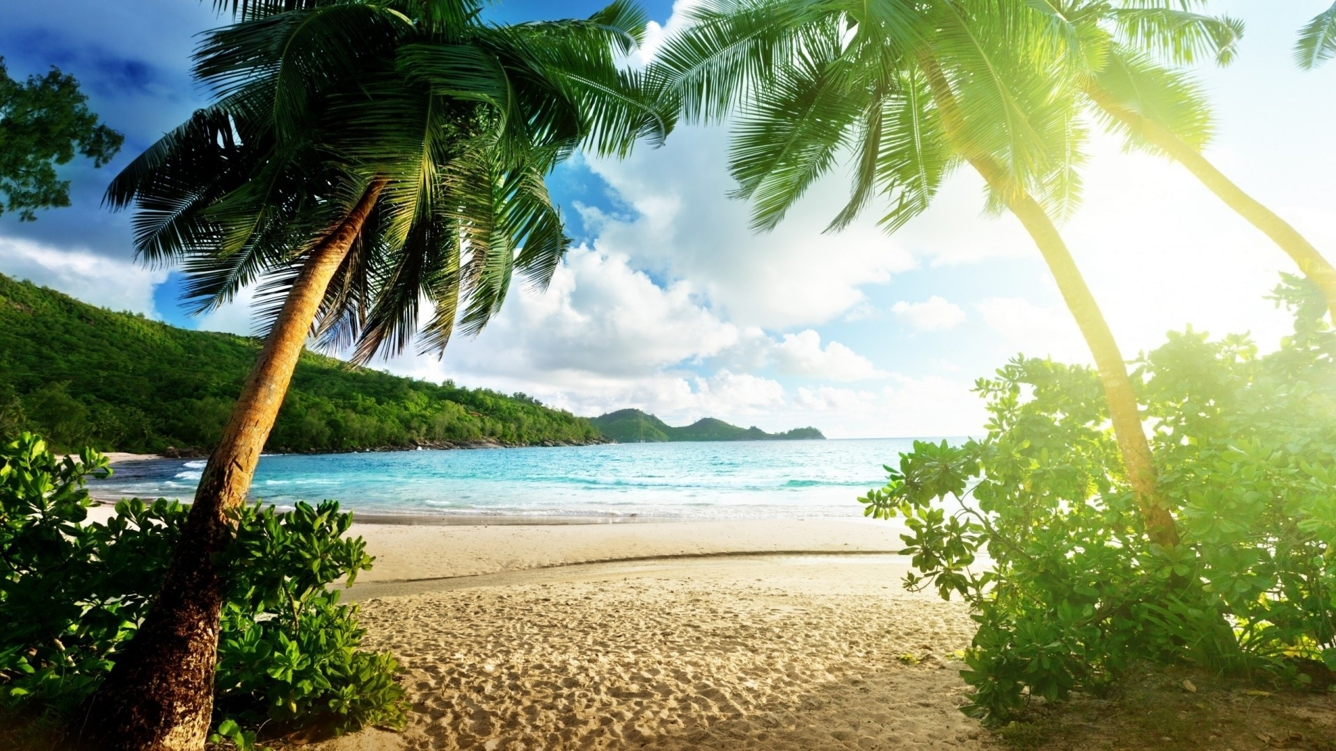 Paradise HD Download