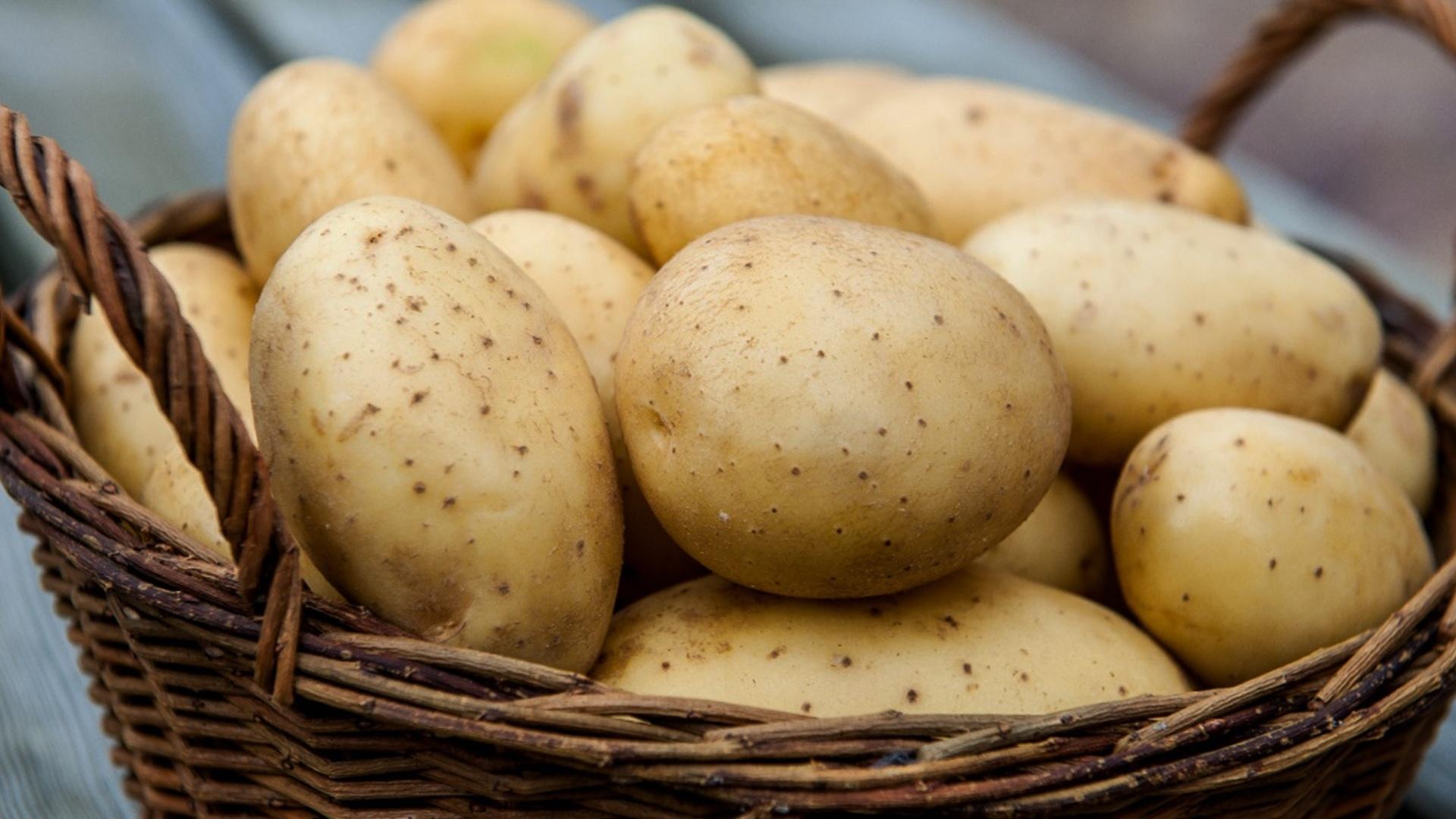 Potatoes a wallpaper