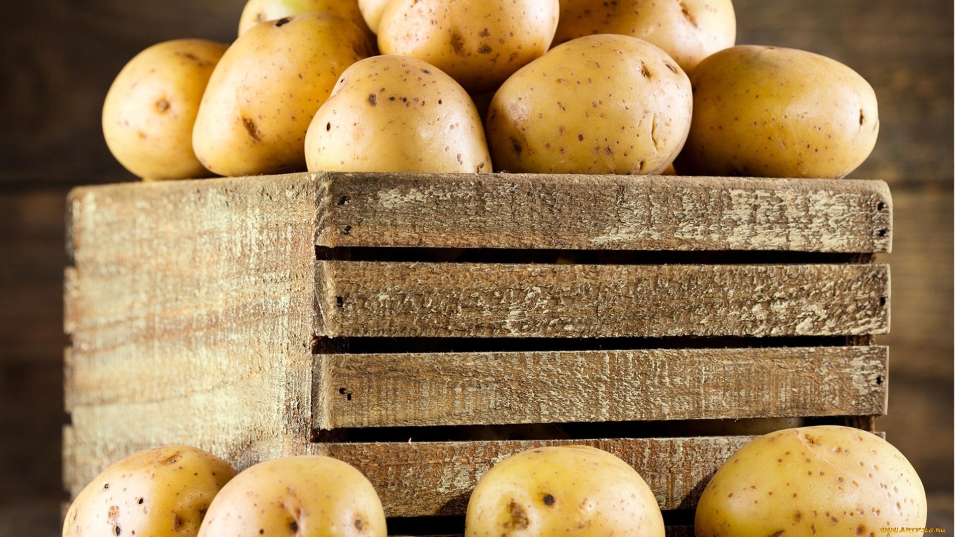 Potatoes Wallpaper for pc