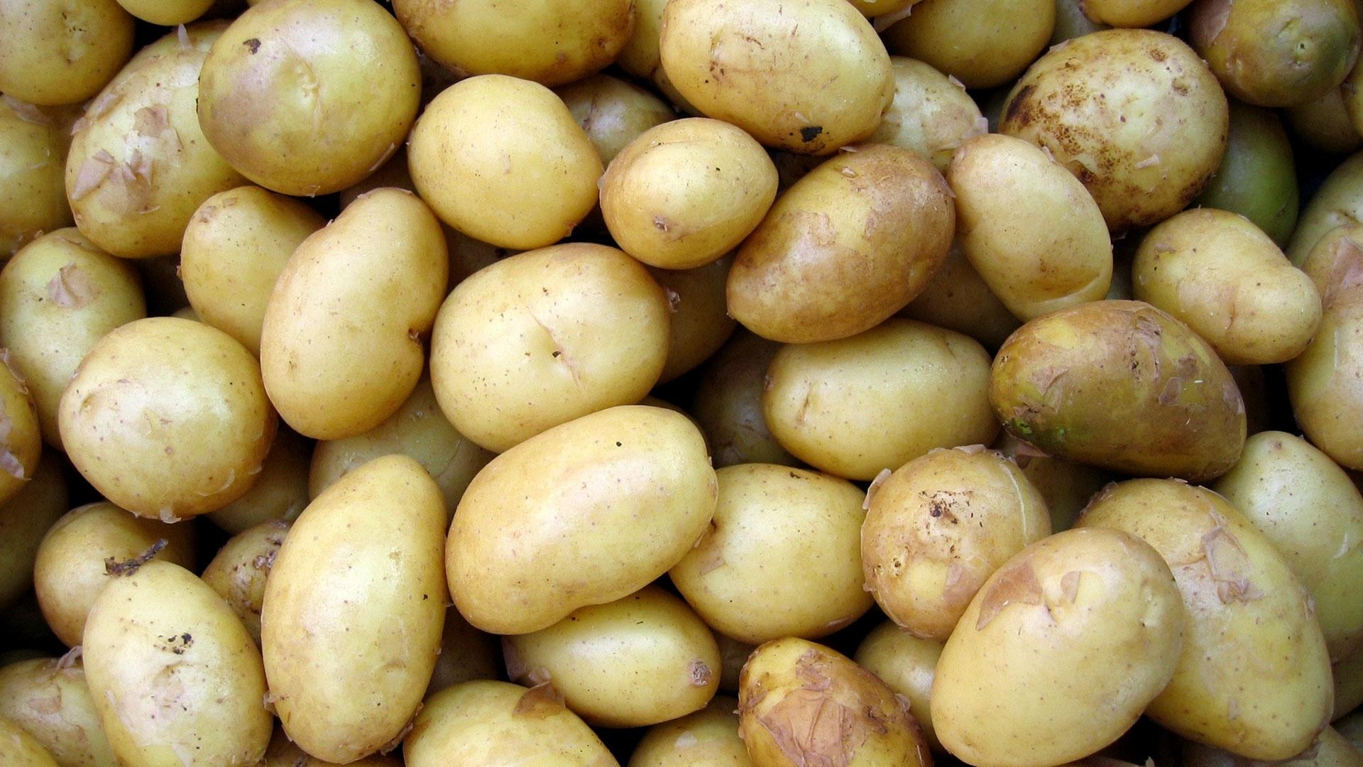 Potatoes Desktop Wallpaper