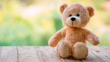 Teddy Bear Free Wallpaper