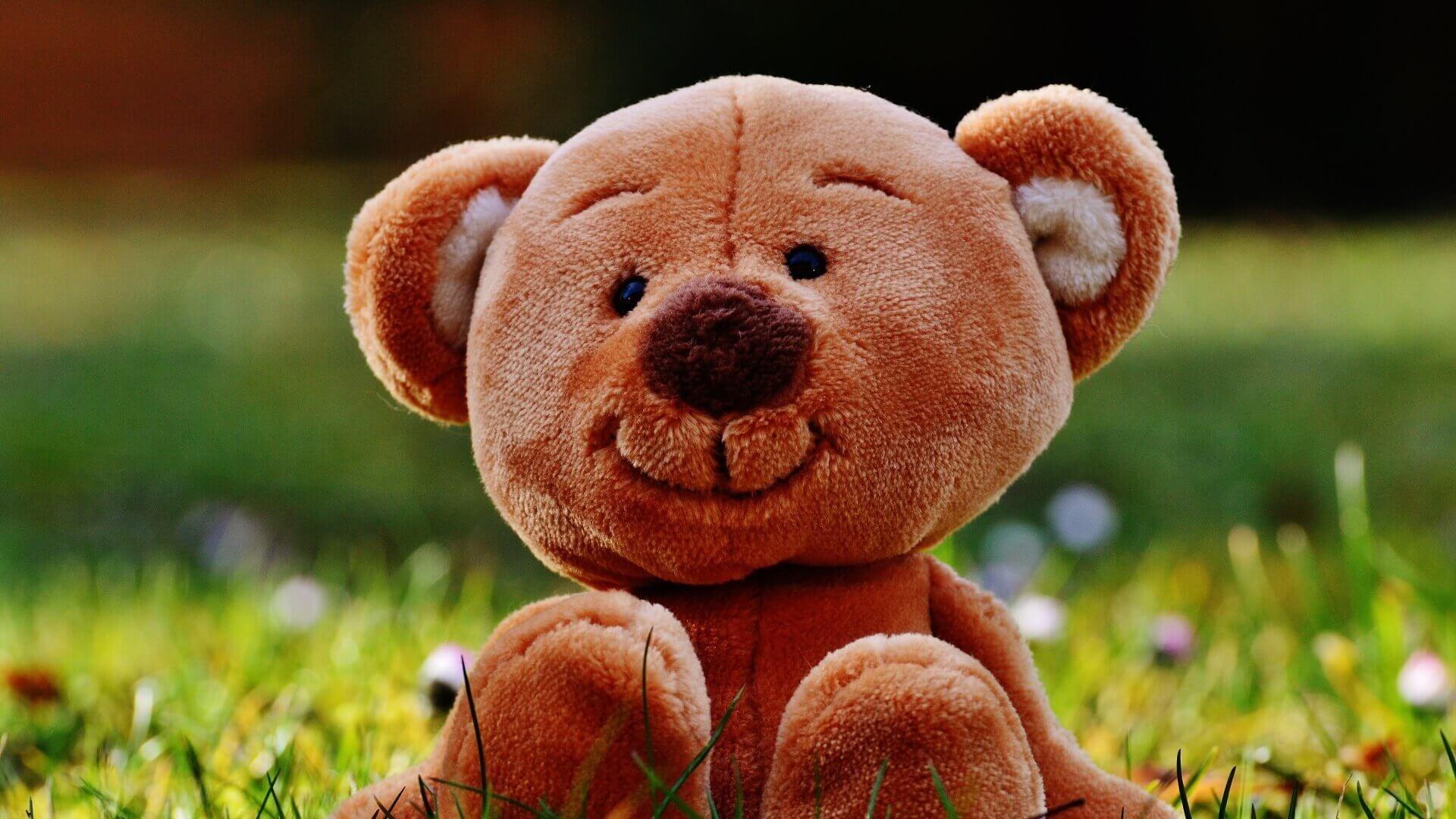 Teddy Bear Free Wallpaper