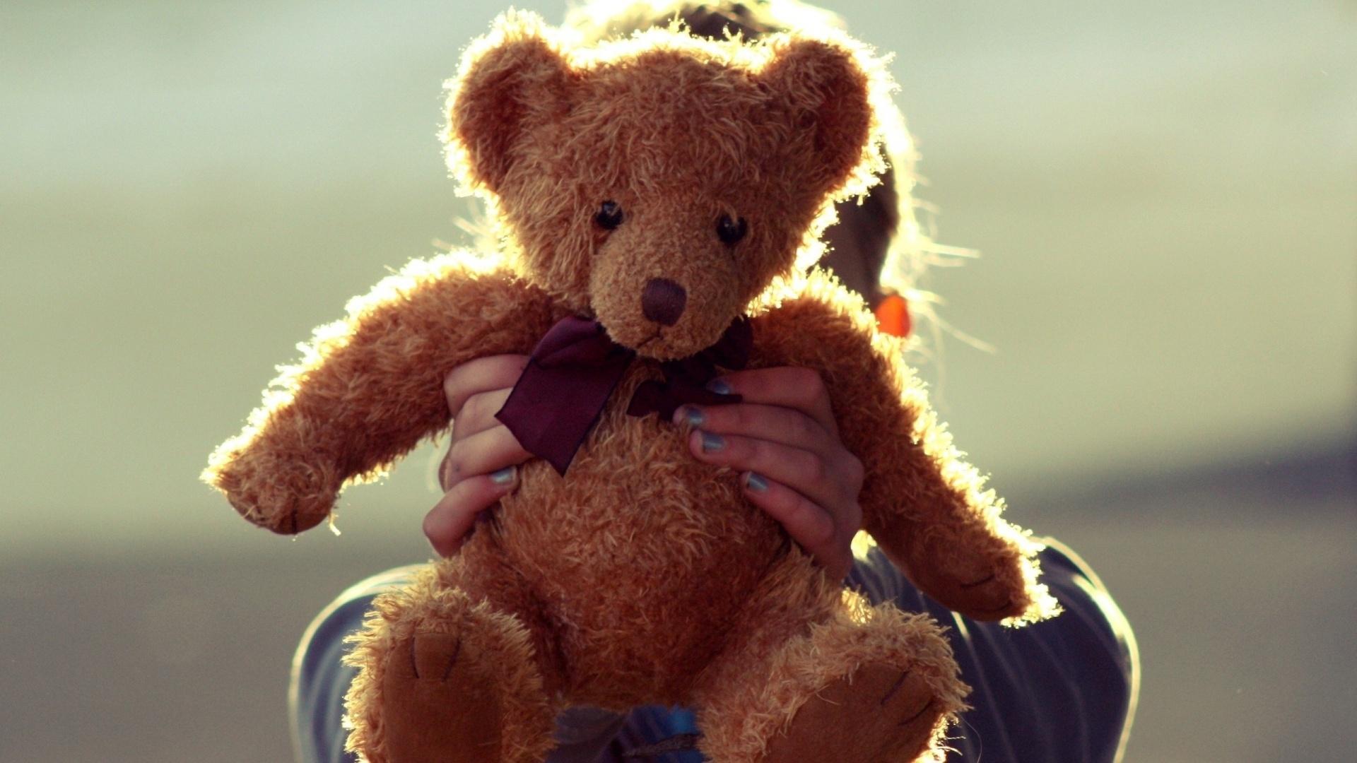 Teddy Bear Download Wallpaper