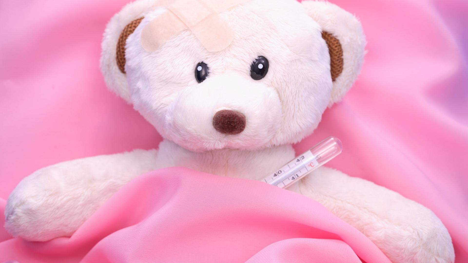 Teddy Bear Desktop Wallpaper