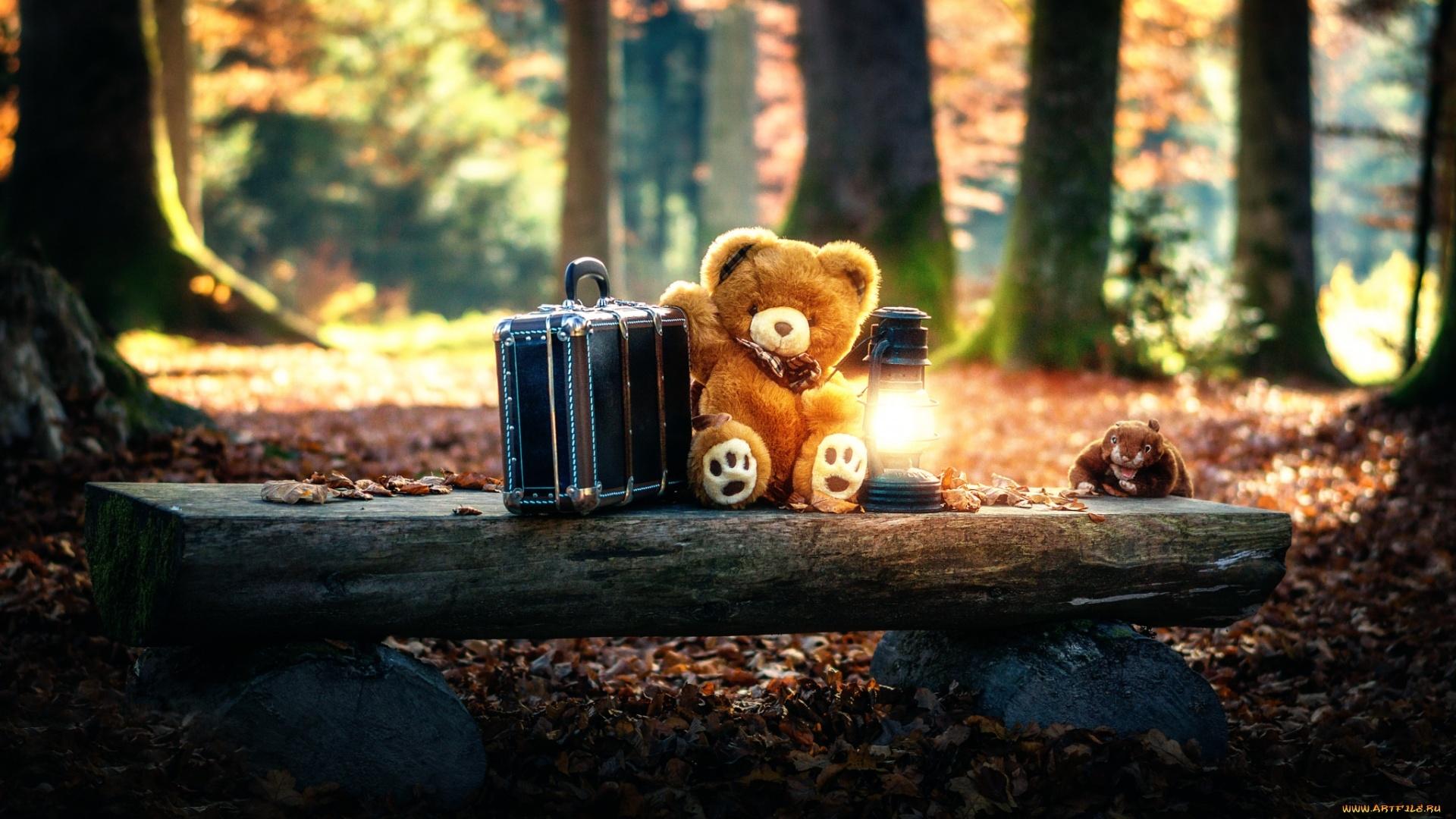 Teddy Bear Wallpaper image hd