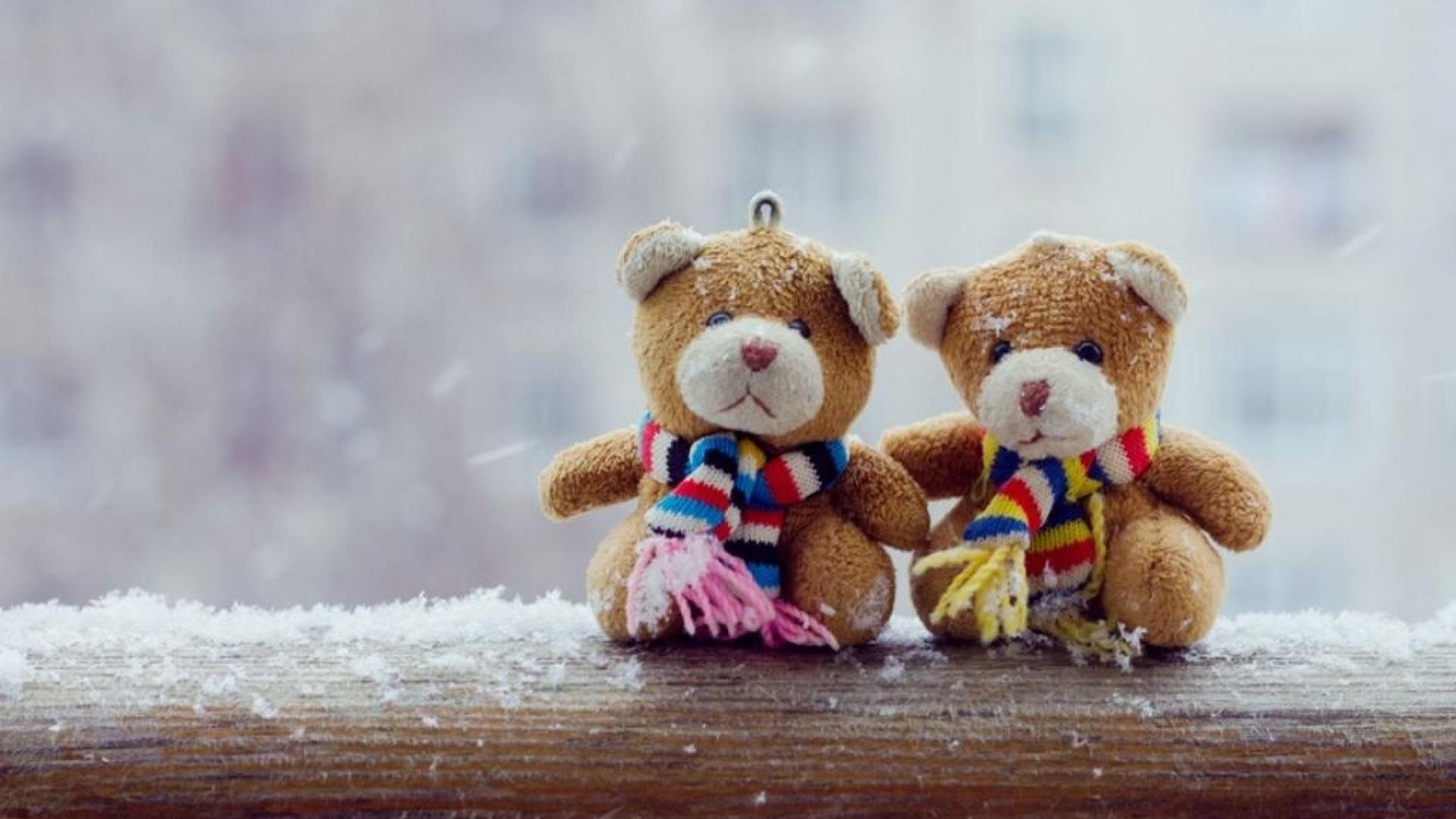 Teddy Bear a wallpaper