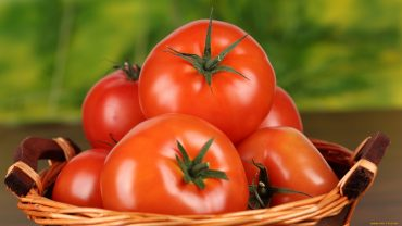 Tomatoes Free Wallpaper