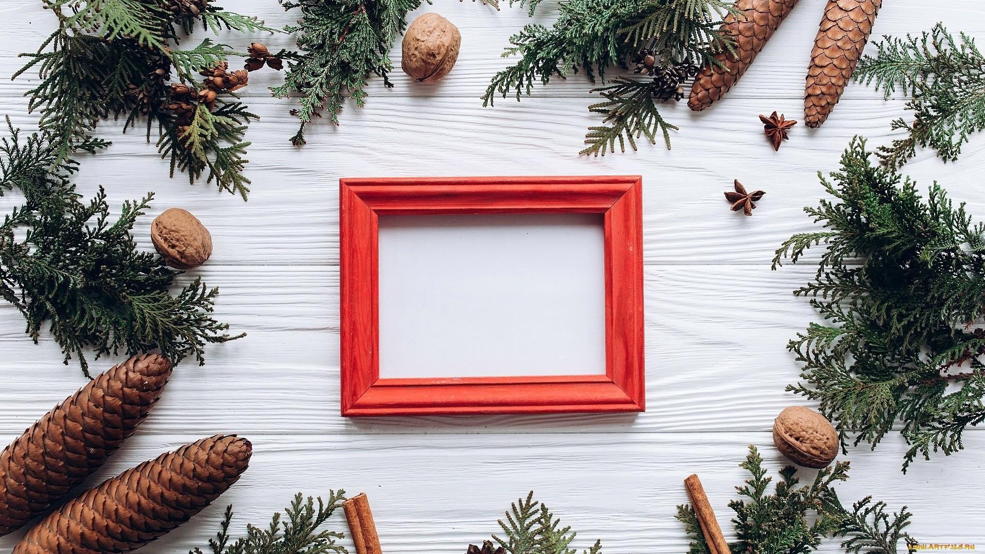 New Year Branch Frame Desktop Wallpaper