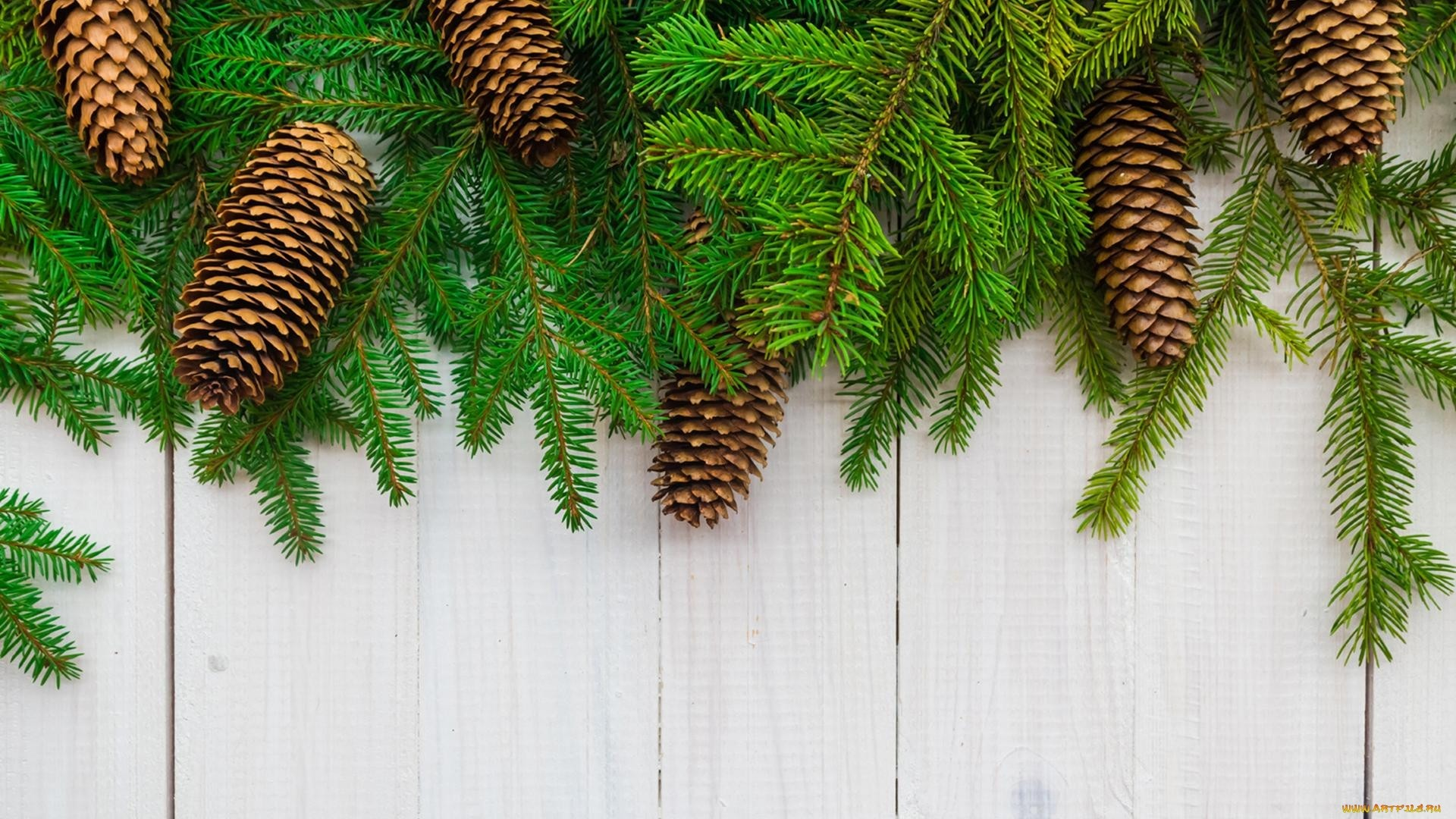 New Year Branches Wallpaper theme