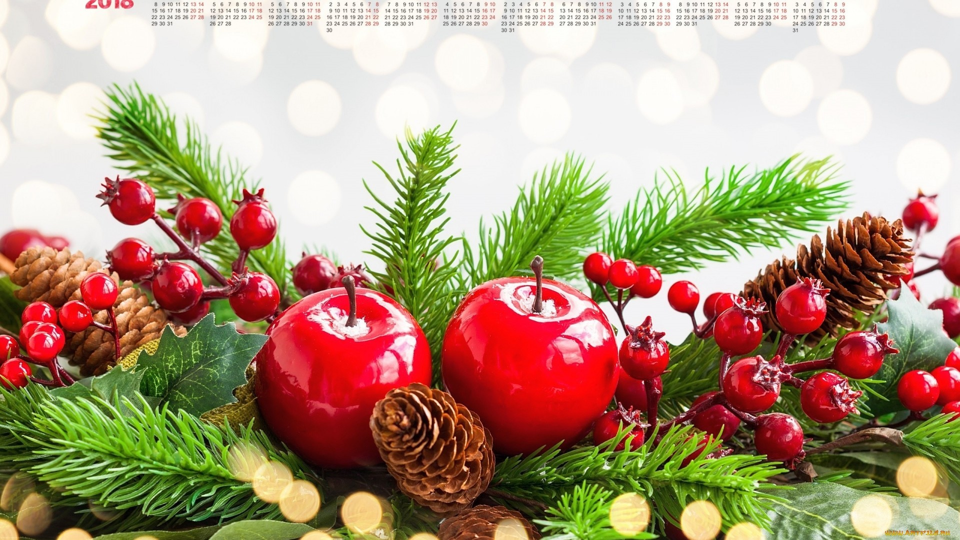 New Year Branches Full HD Wallpaper