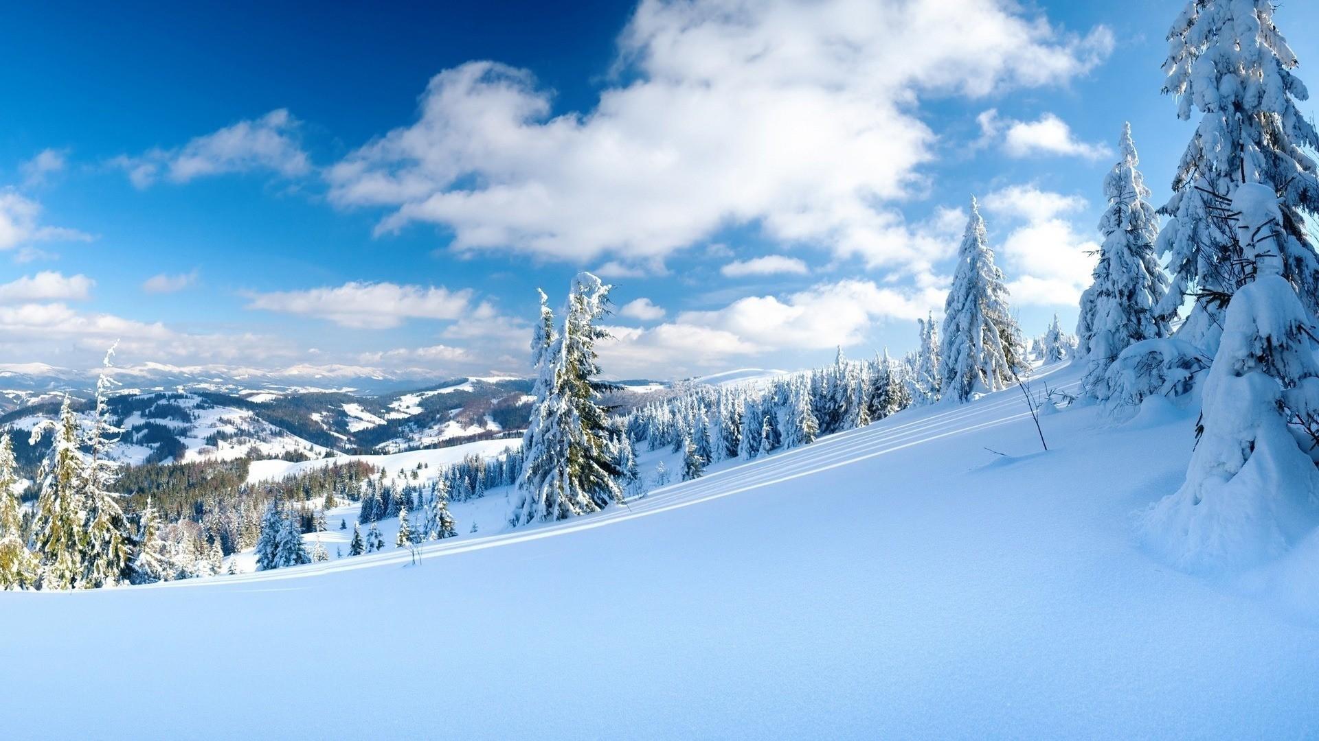 Snowy HD Wallpaper