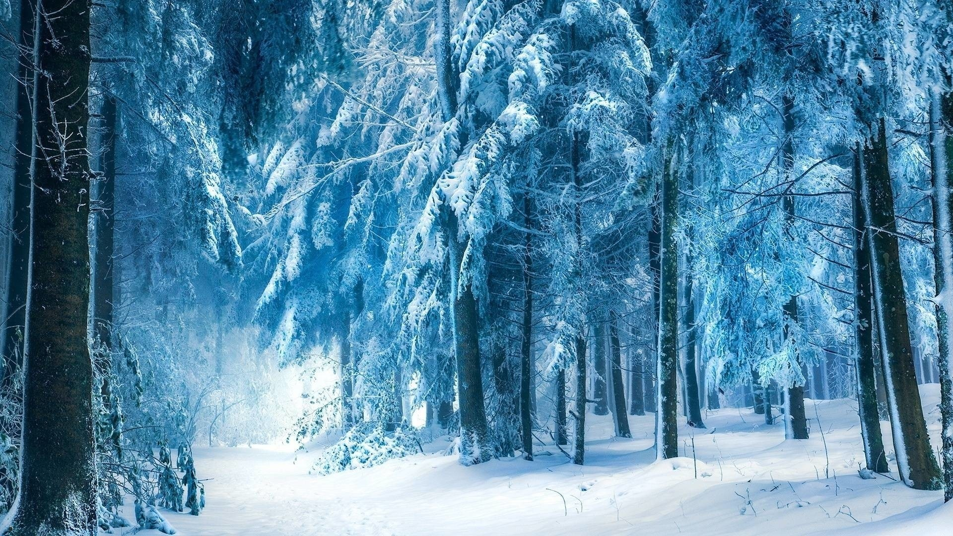 Snowy Wallpaper for pc