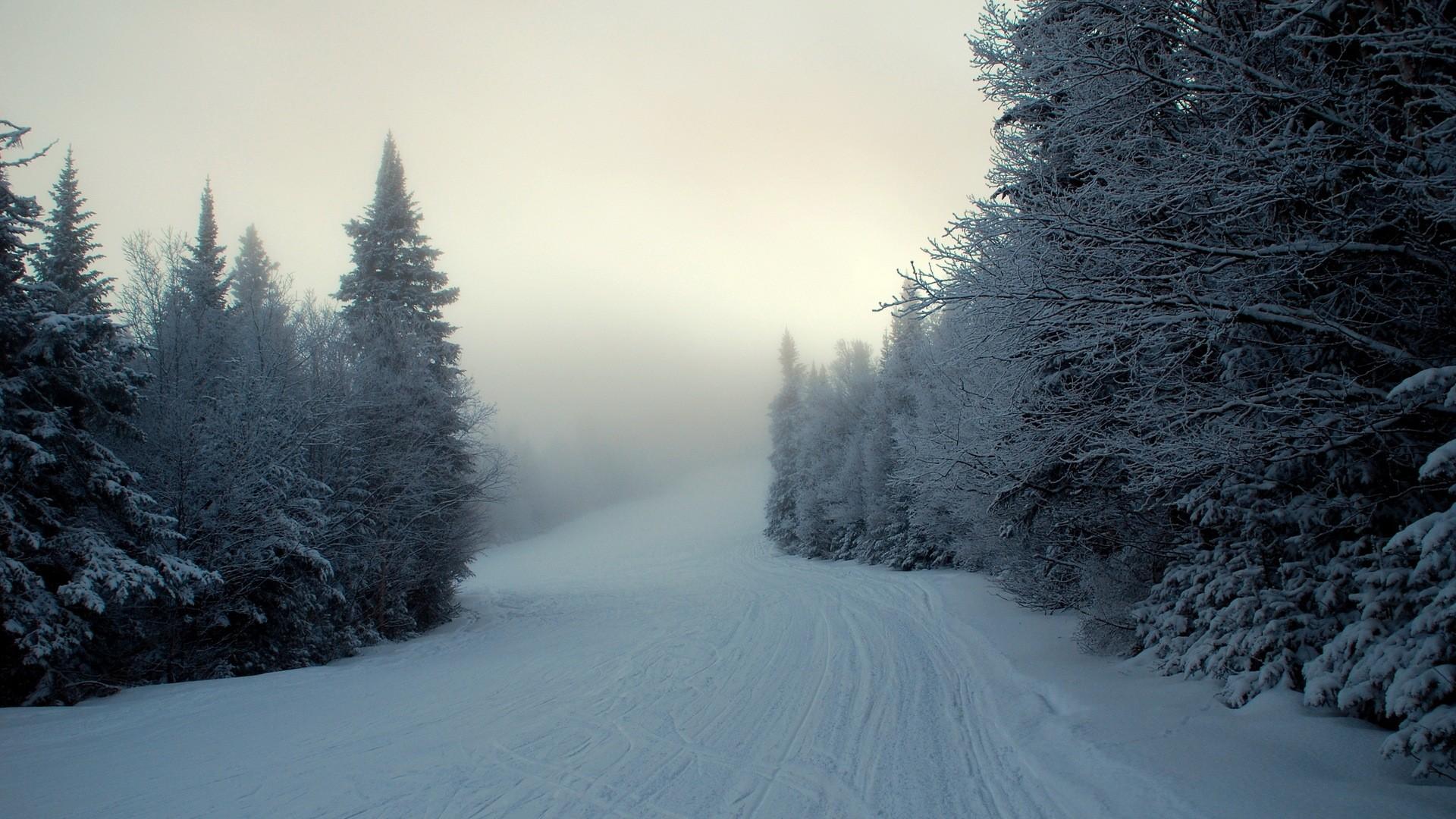 Snowy Pic