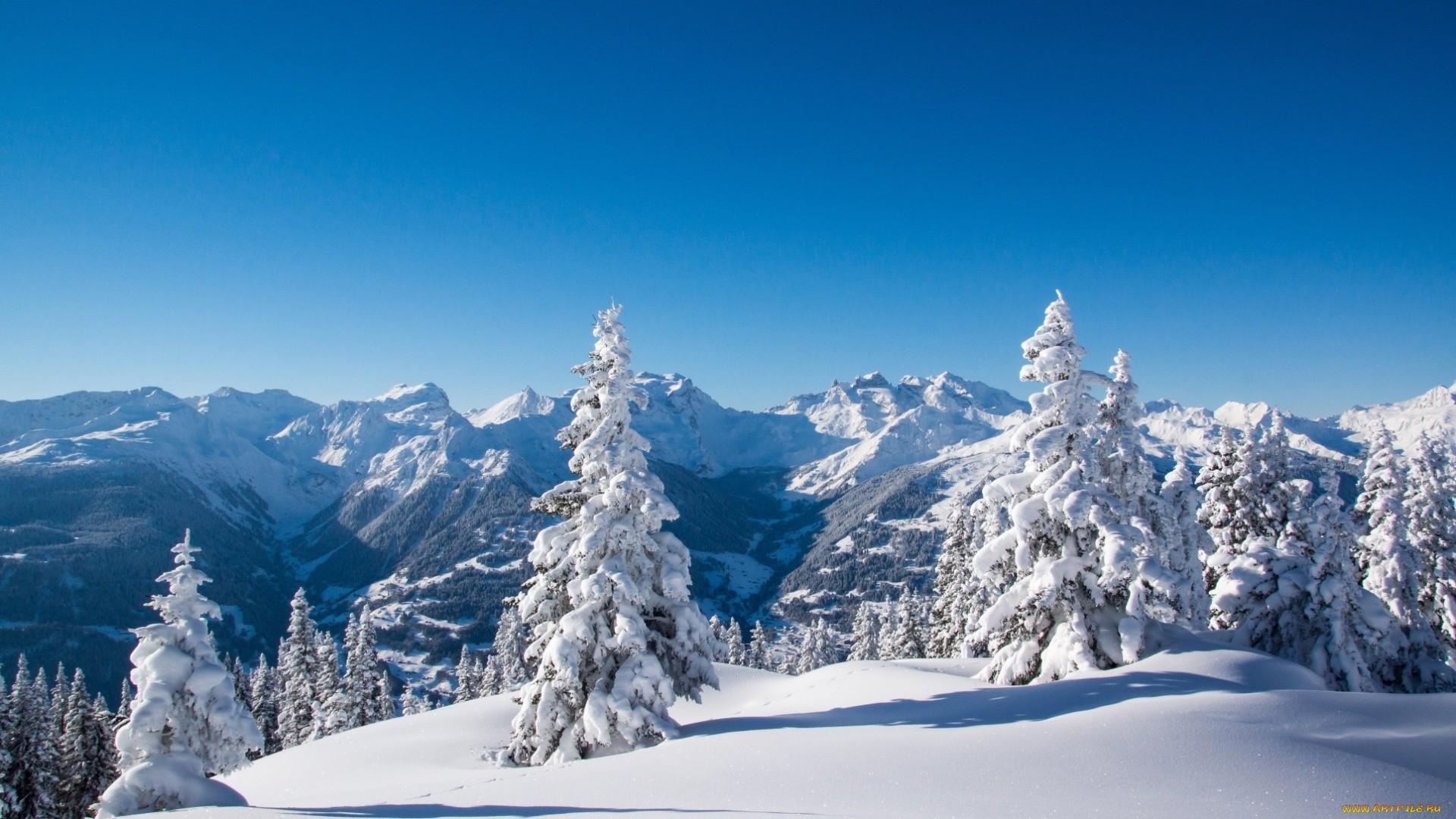 Snowy Wallpaper image hd