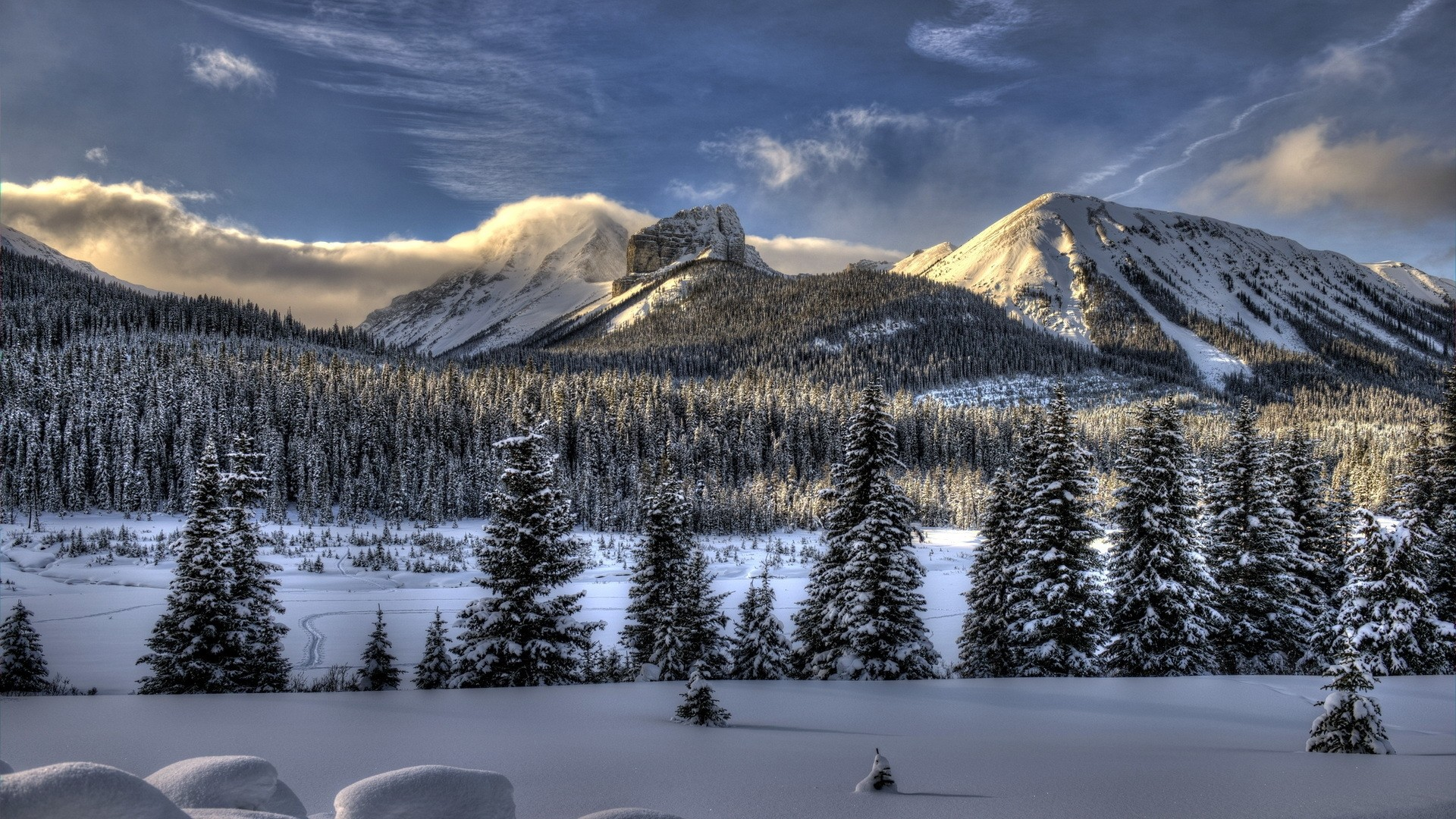 Snowy Full HD Wallpaper