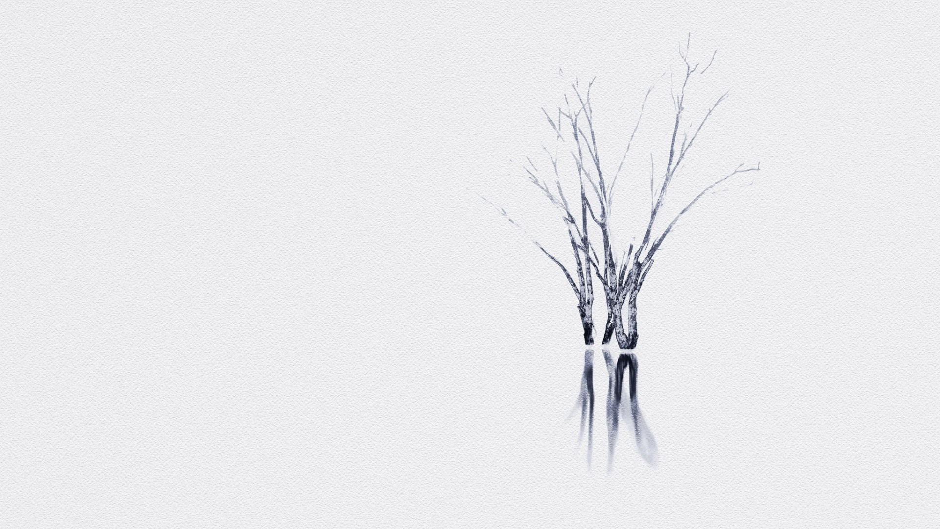 Tree Minimalist Wallpaper Picture hd